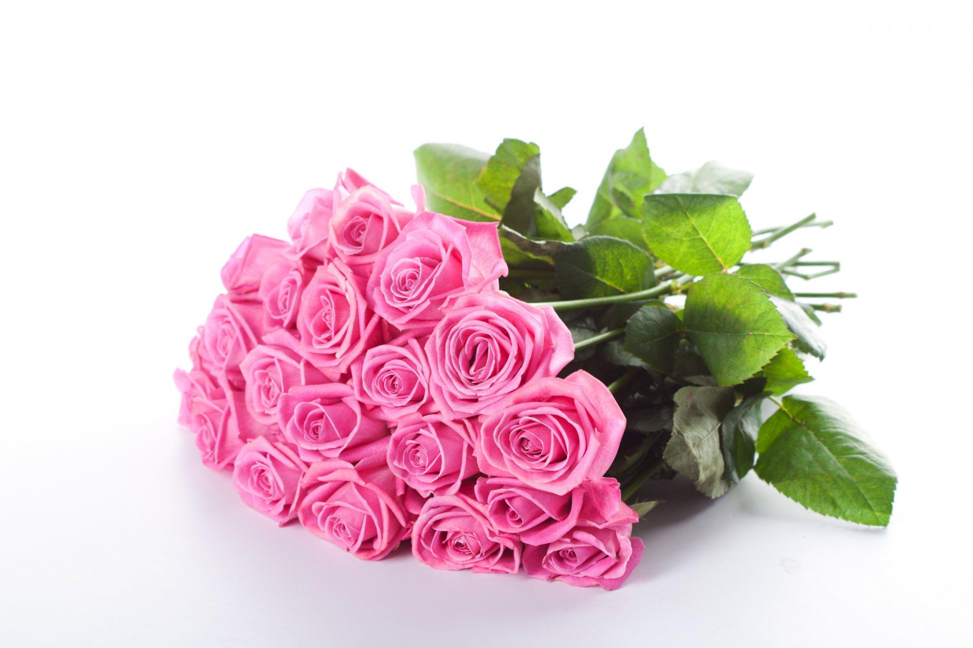 Примирения, розовые розы фото открытка