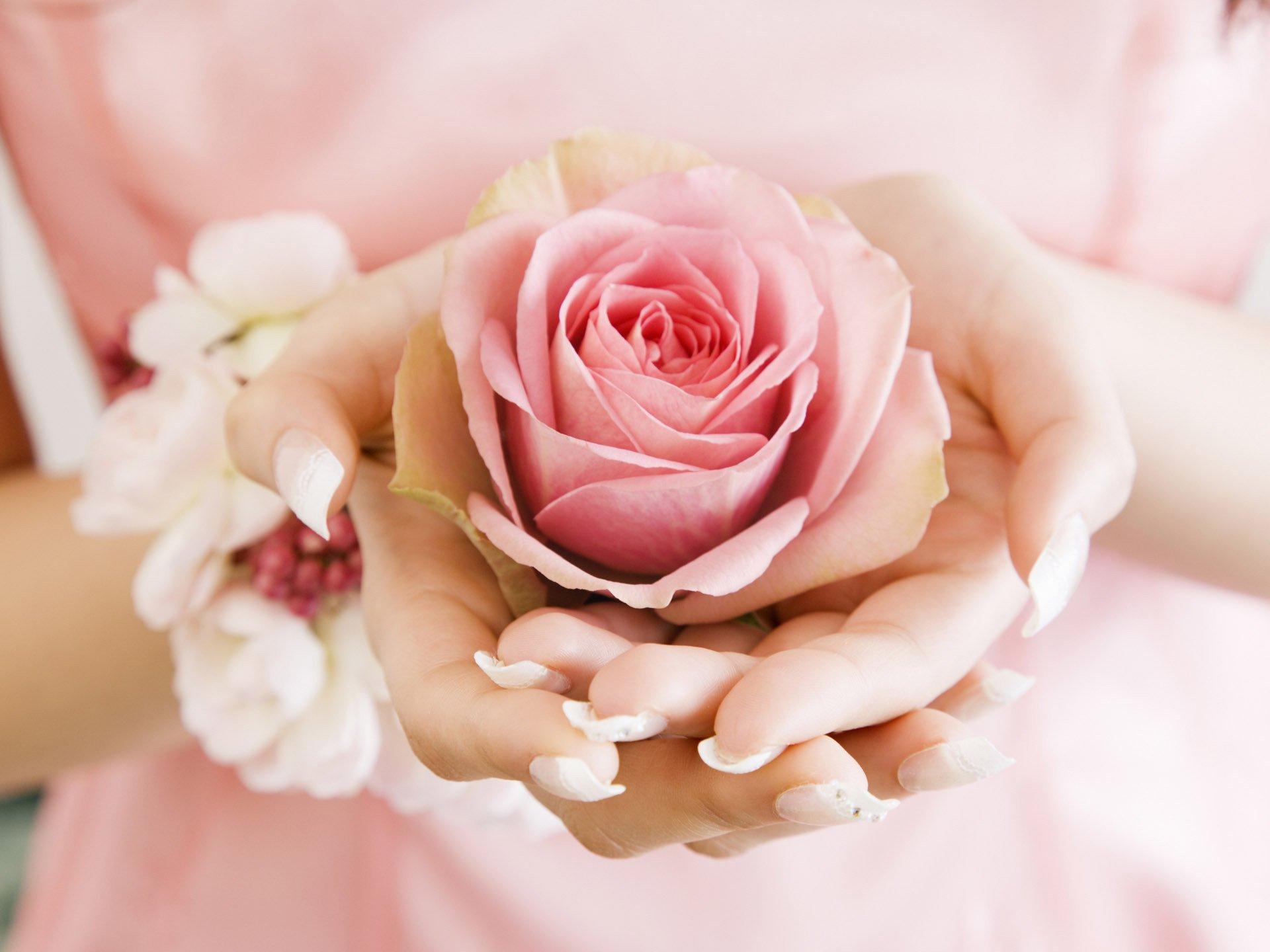 Рука, цветок без смс
