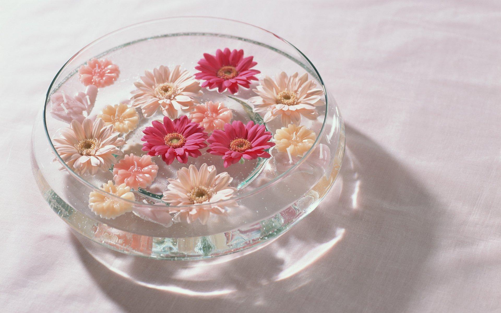 Роз для, букет в воде