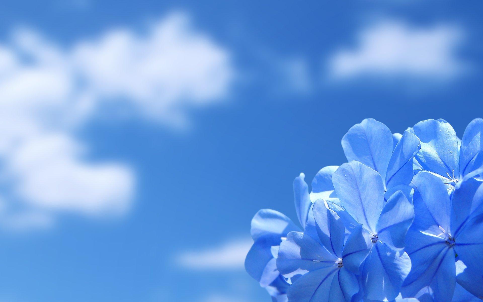 Обои красота, Облака. Природа foto 15