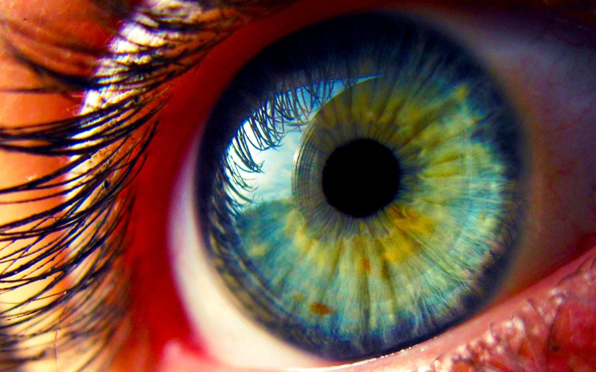 Макро глаз макро ресницы бесплатно