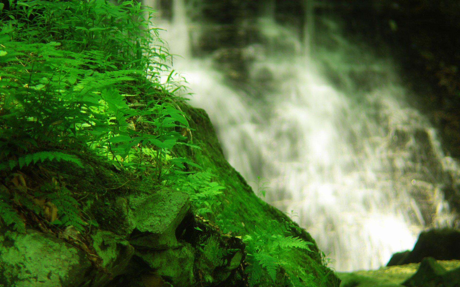 водопад озеро листья растения камни бесплатно