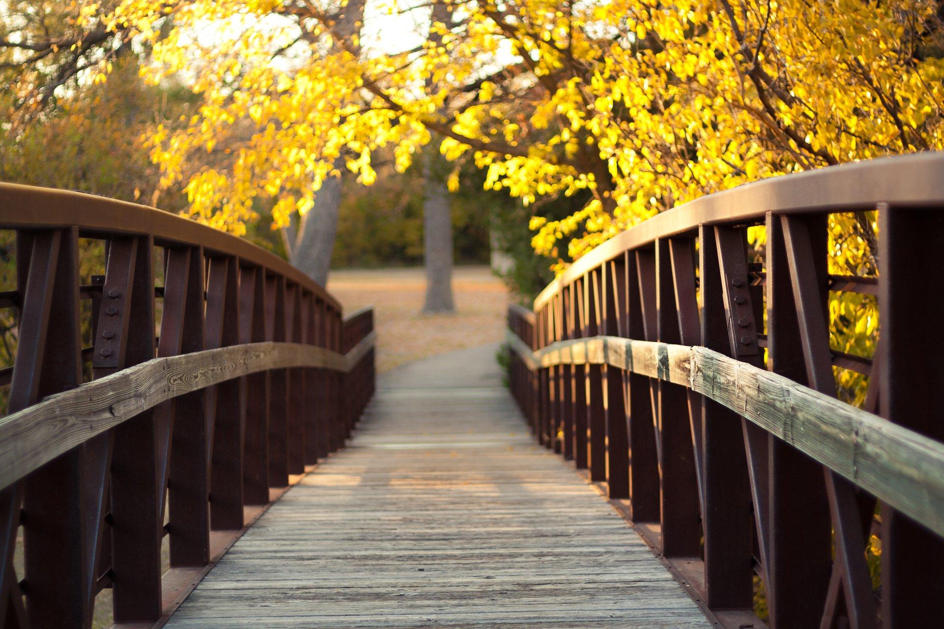 Листья ступеньки осень без смс