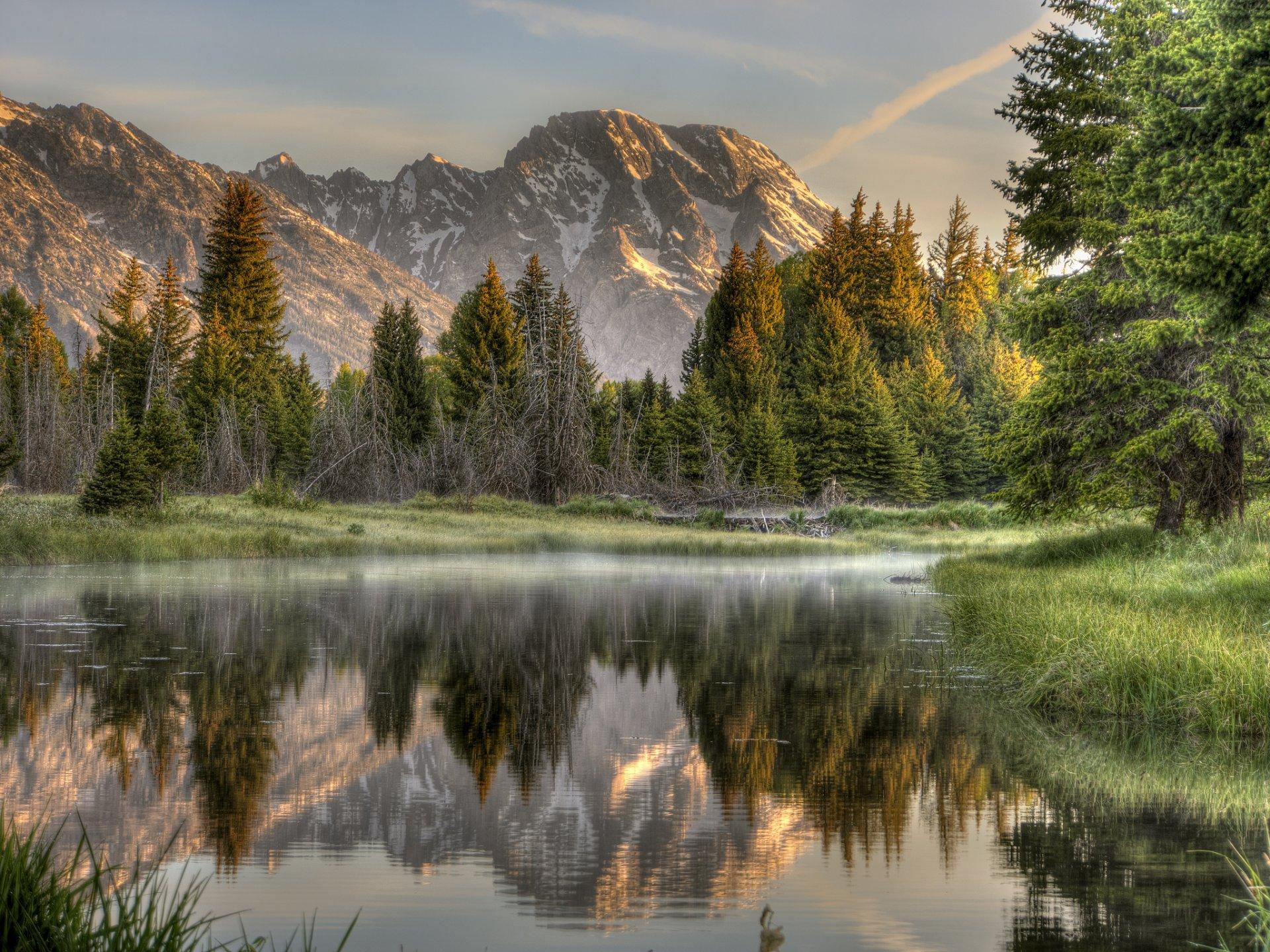 горы отражение озеро лес без смс