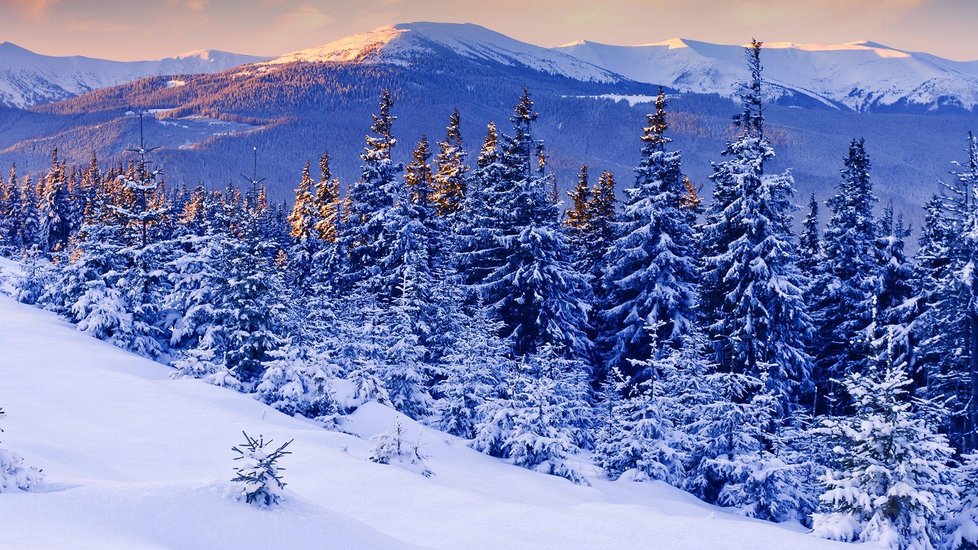 Картинки зимней тематики