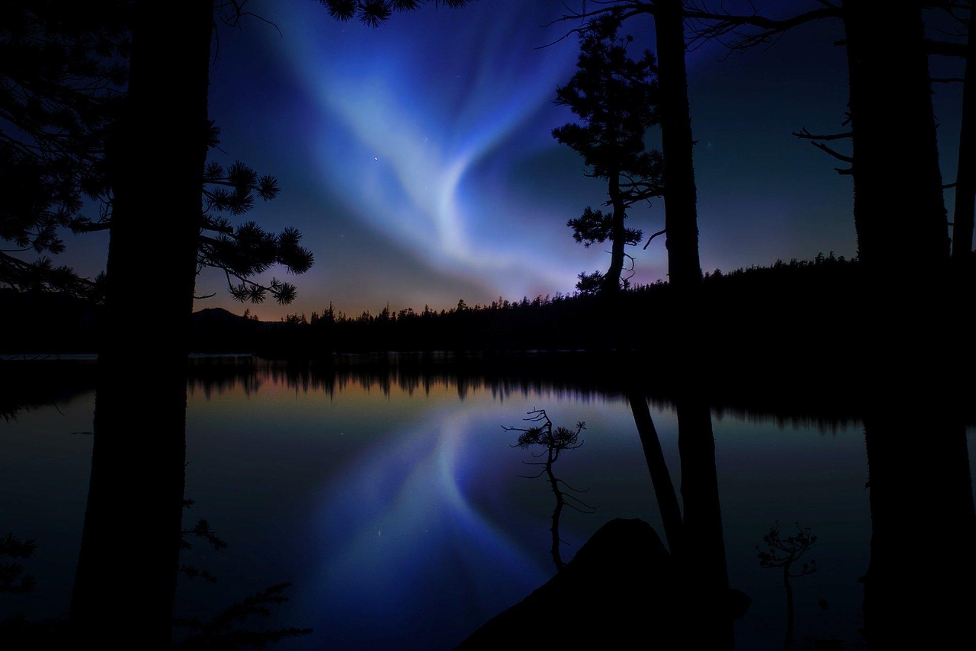 картинки лесное озеро ночью под