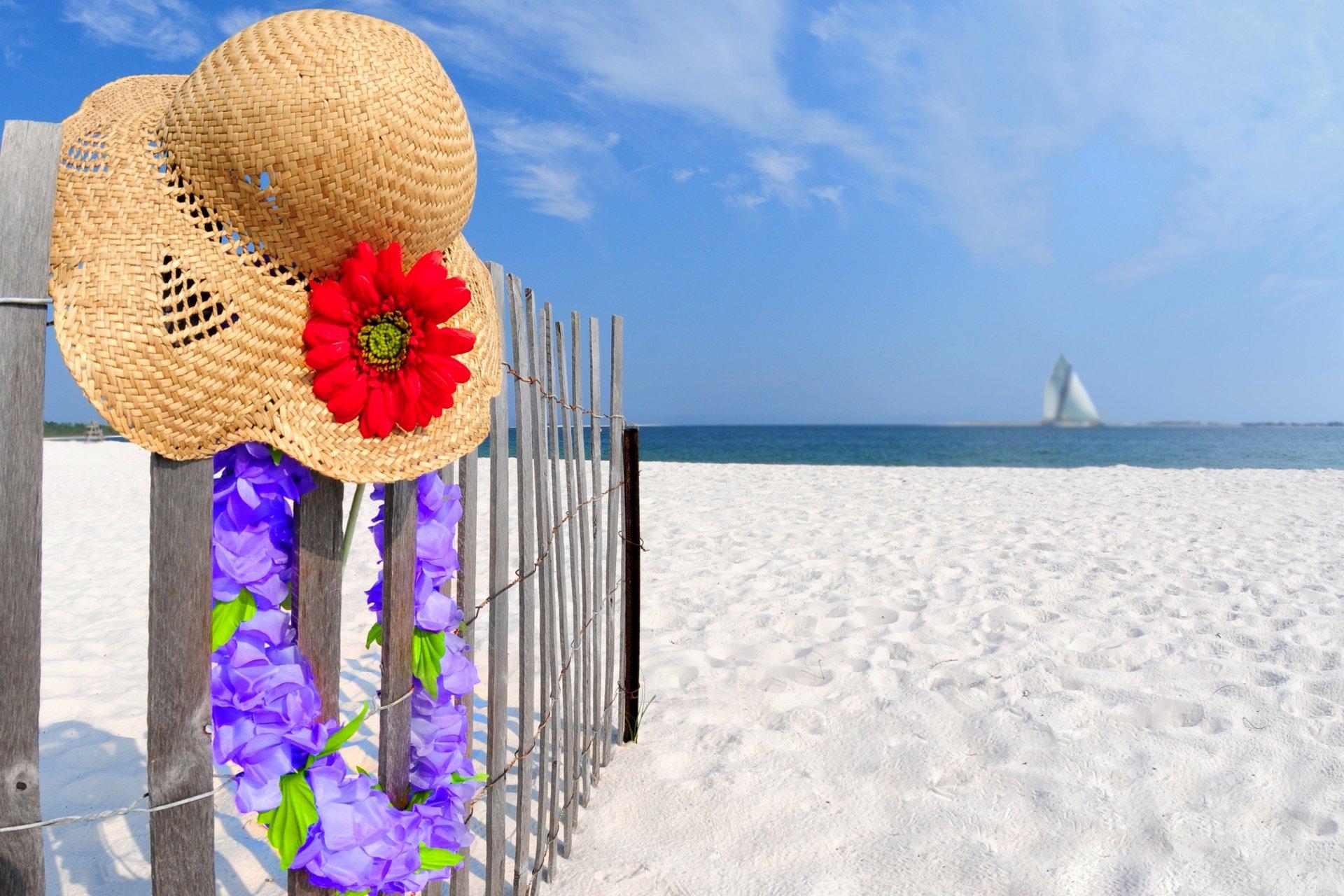 Картинки природа море цветы