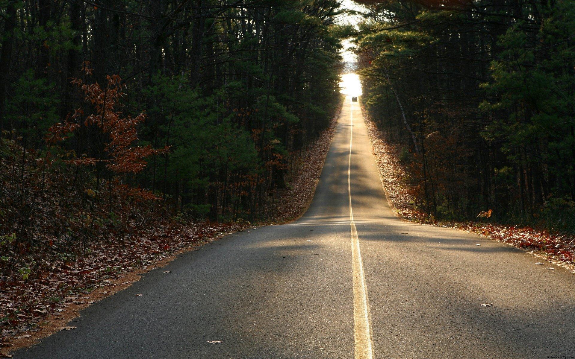 Картинки дорога в даль, марта нарисовано