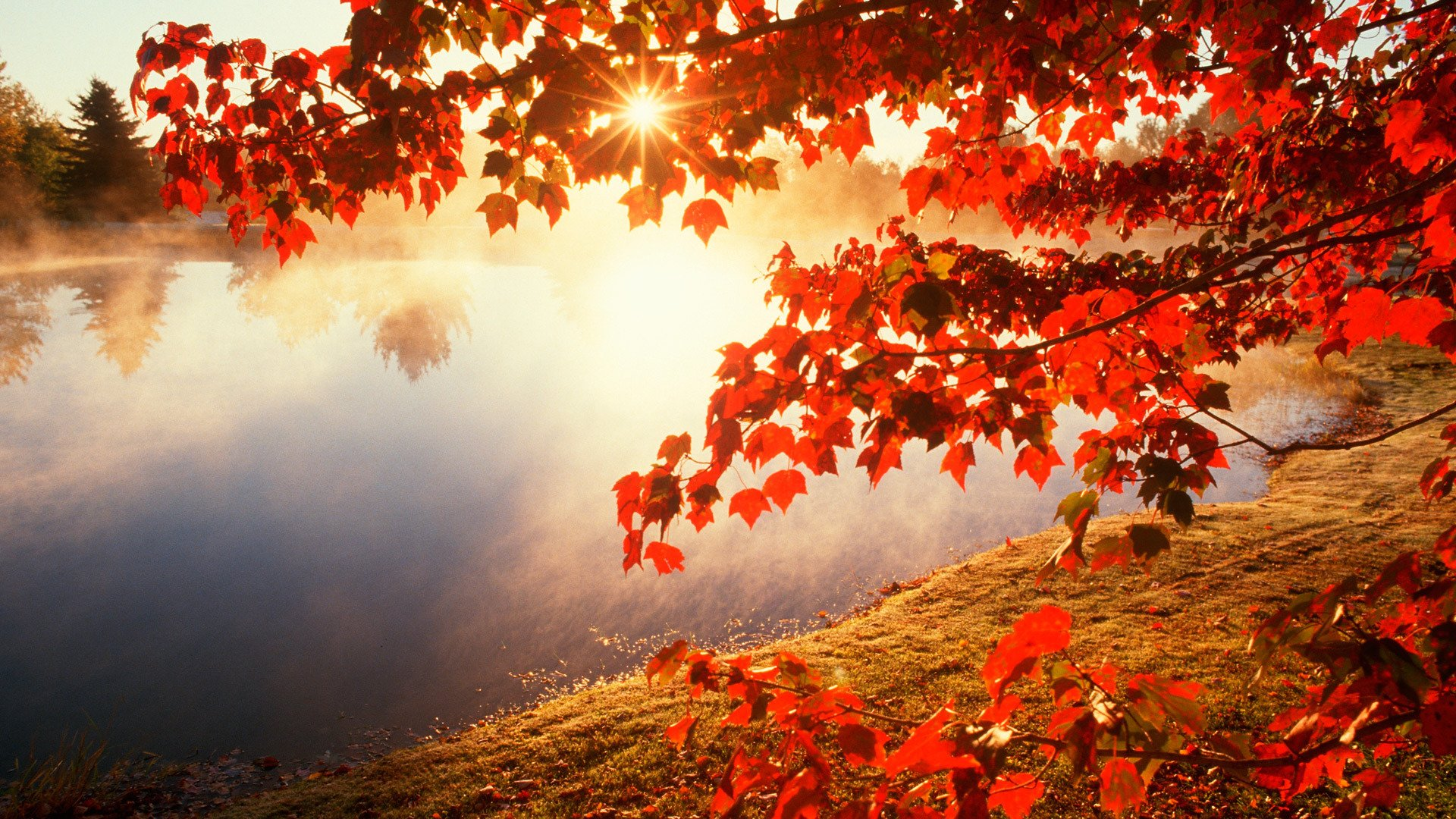 autumn season in pakistan essay Autumn: autumn, season of the year between summer and winter during which temperatures gradually decrease it is often called fall in the united states because leaves fall from the trees at that time.