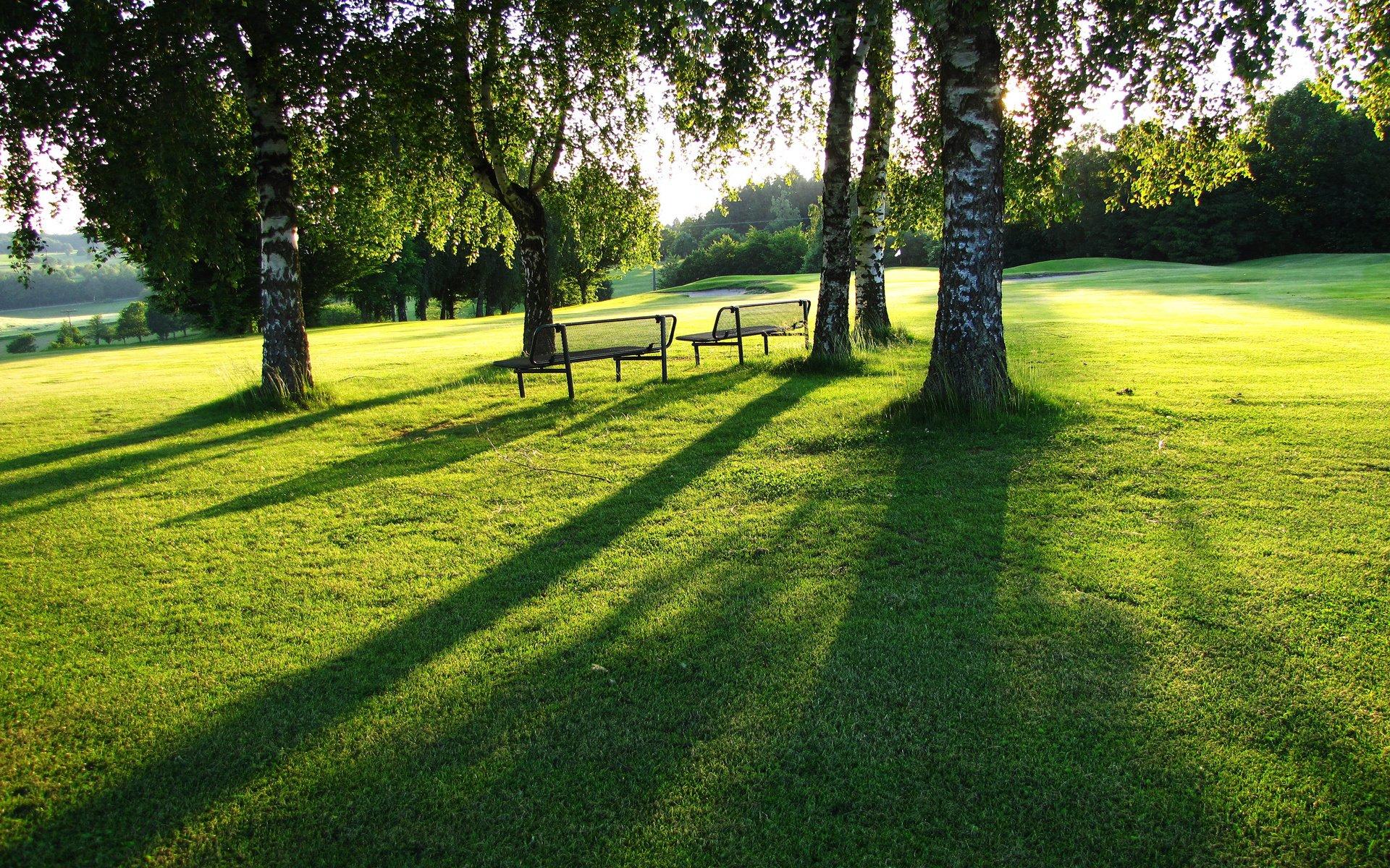 природа трава скамейка без смс