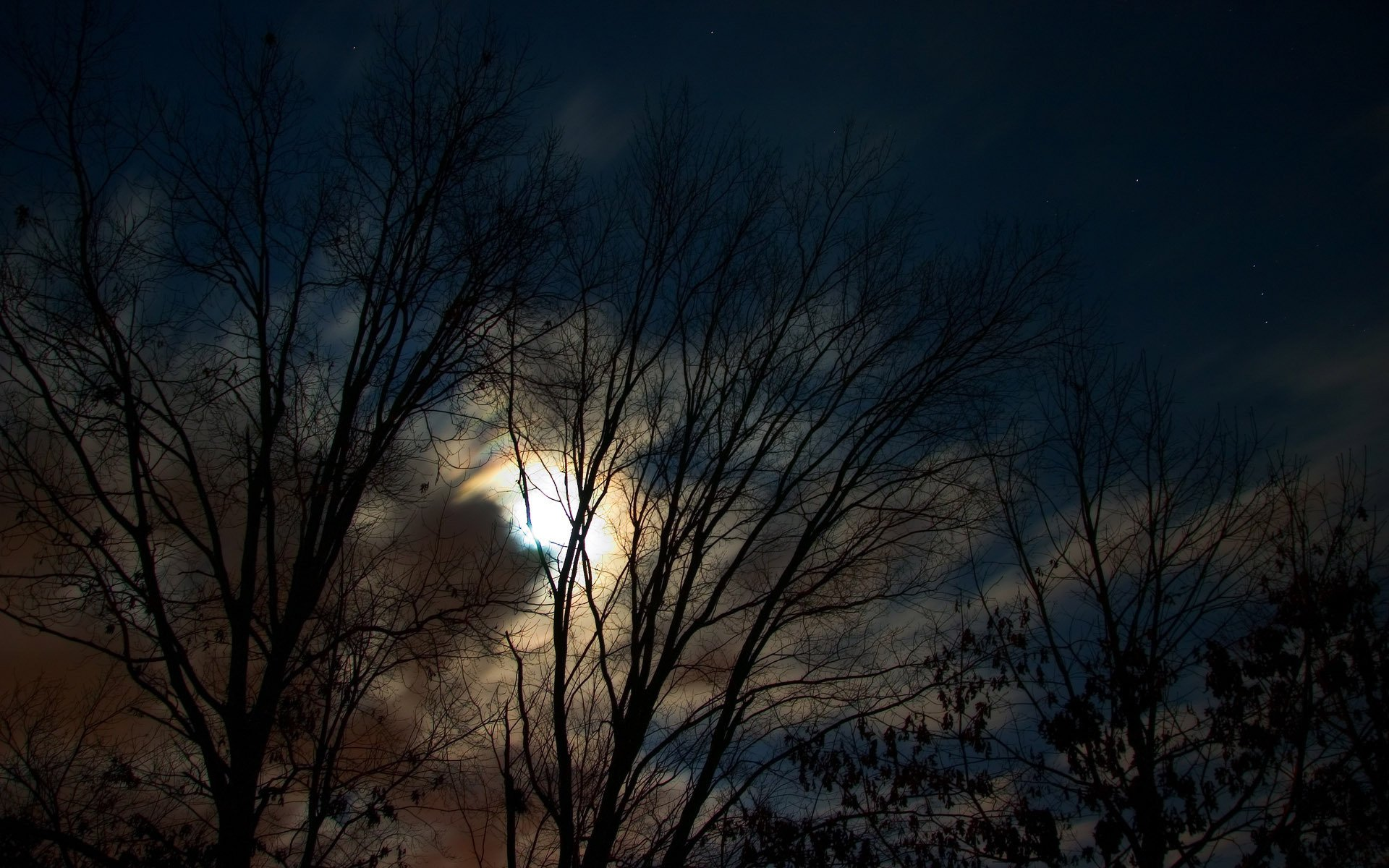 Открытка с темной ночью