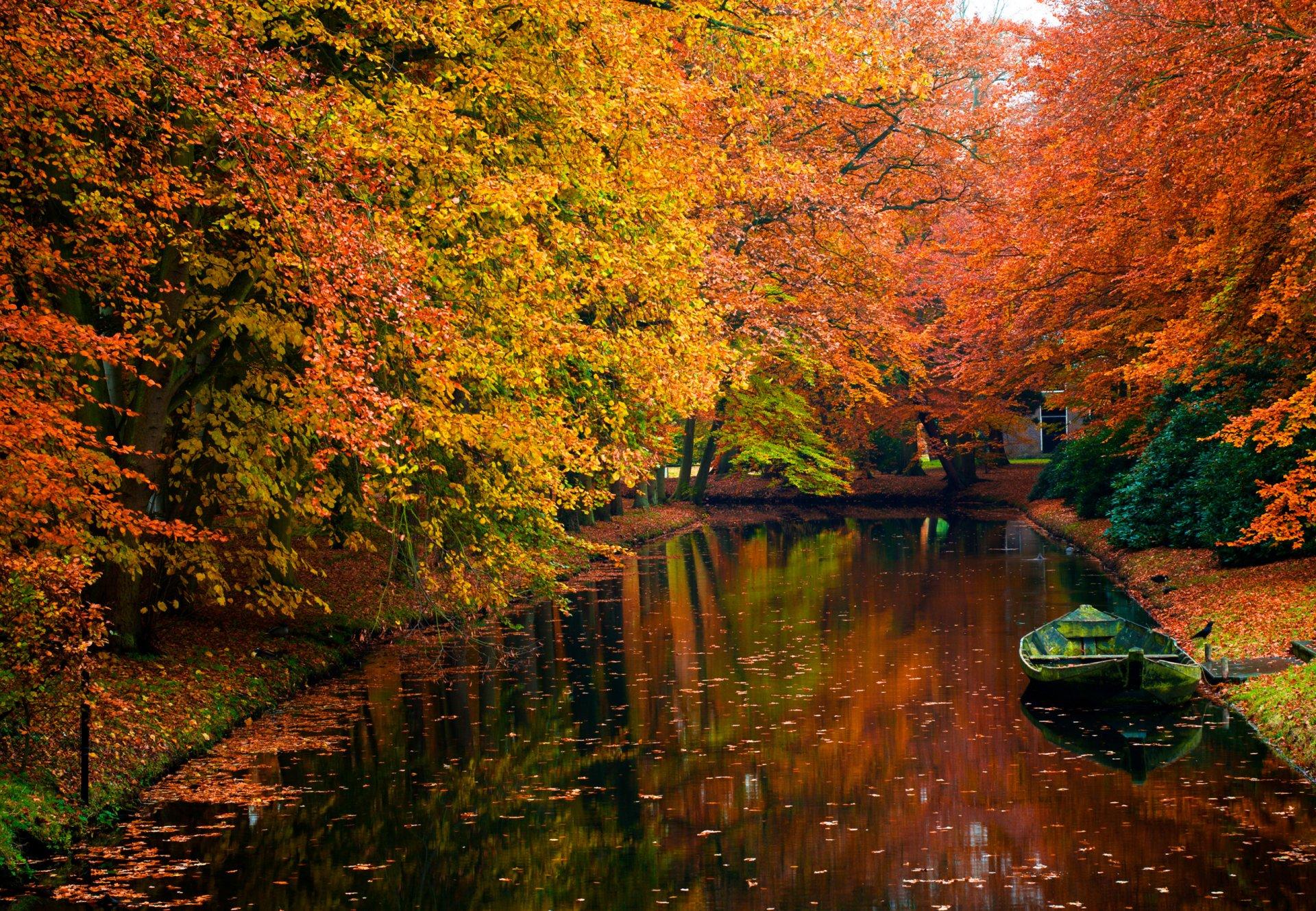 Картинки про осень, новый год