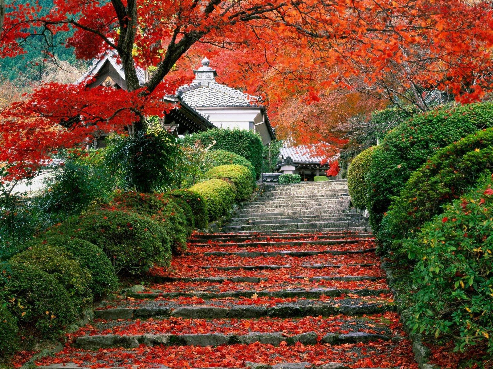 Осень в разных странах мира фото