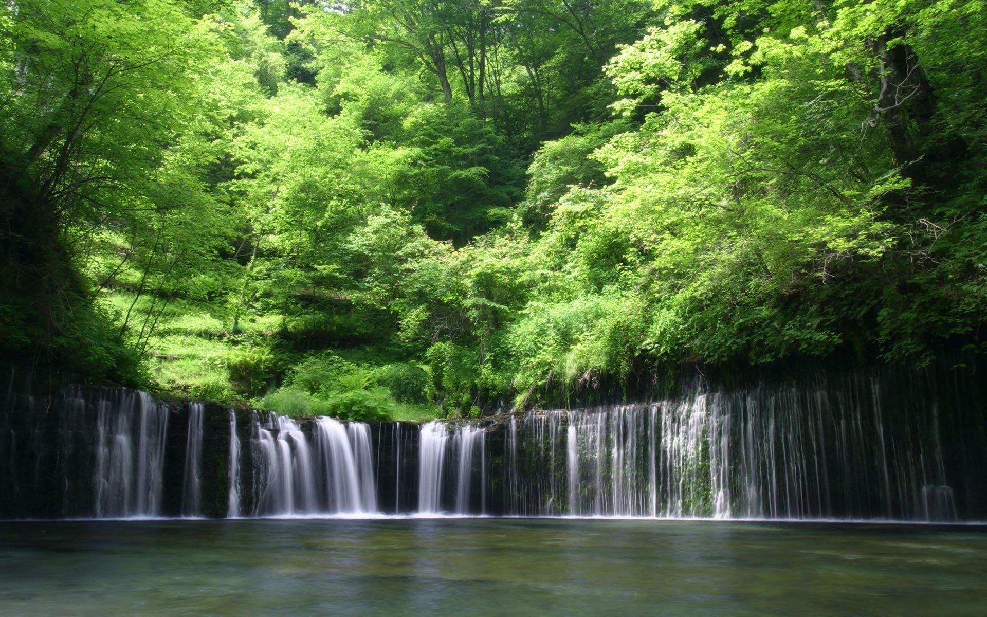 обои лесной водопад этаж, отдельный