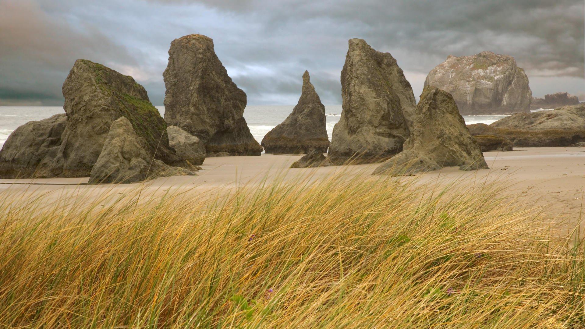 Скалы на болоте загрузить