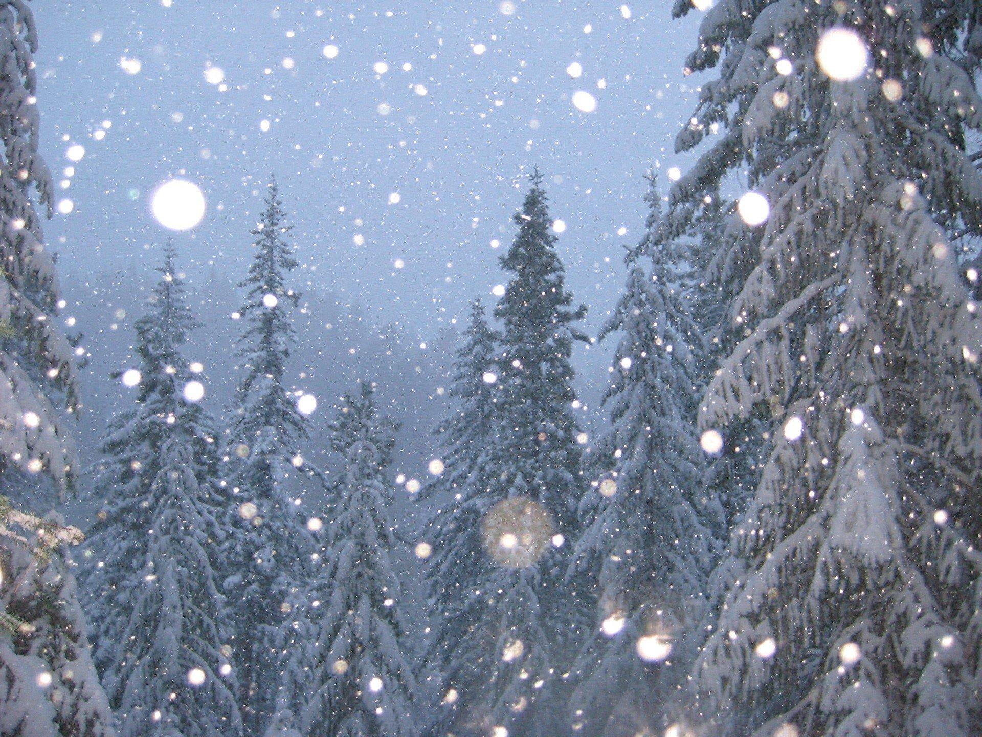 Картинка на рабочий стол зима падает снег