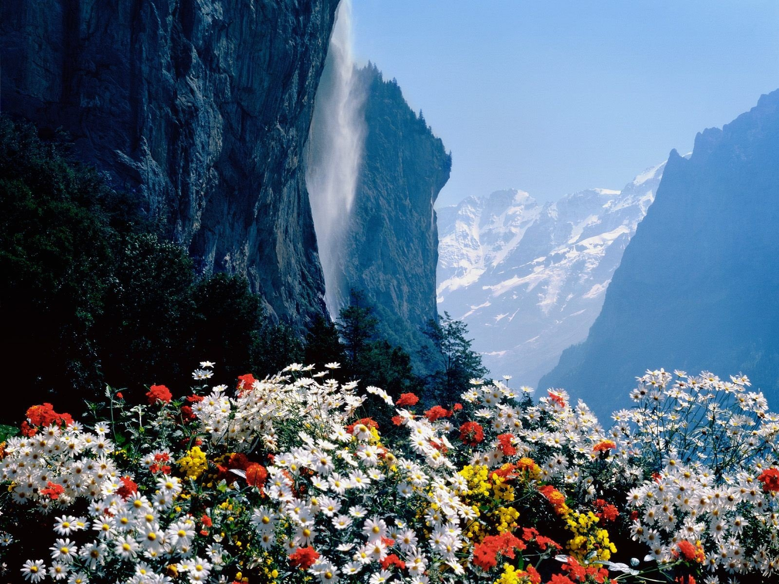 Красивые открытки с природой с днем рождения