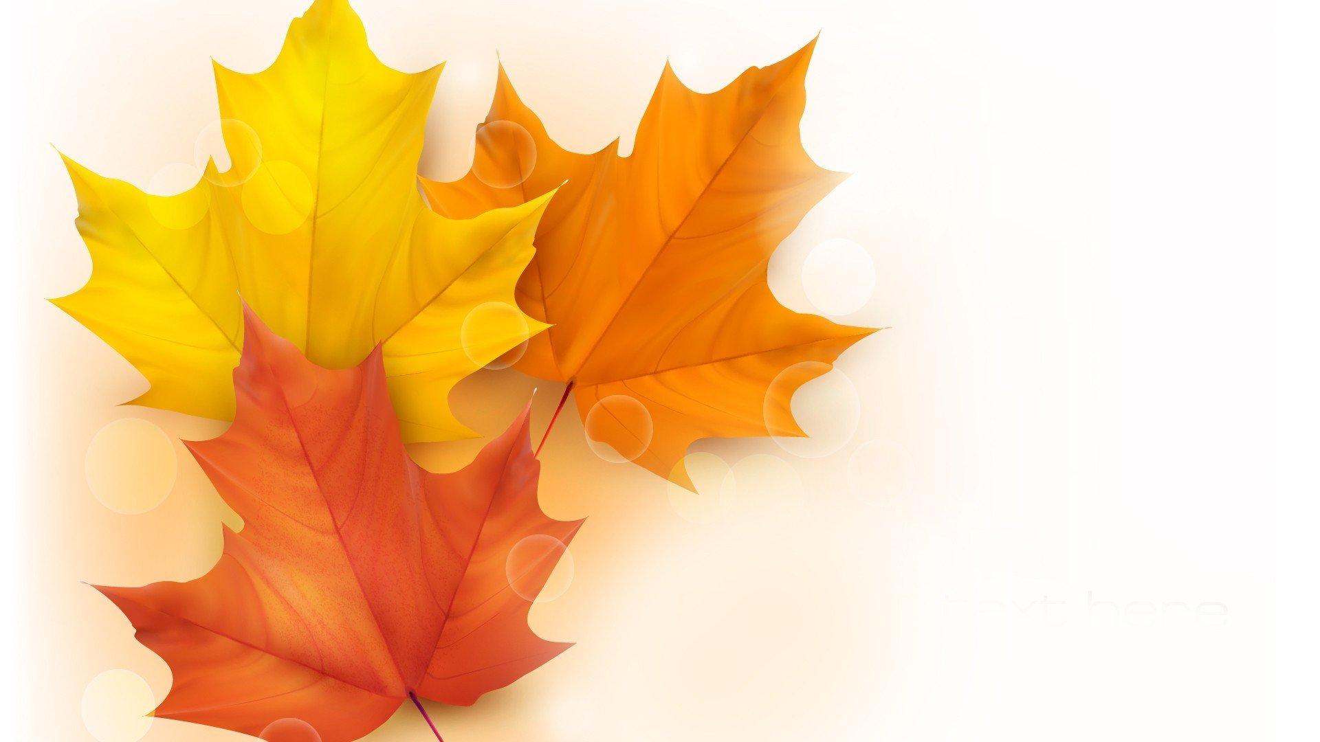 Обои осень, желтый, вектор. Минимализм foto 15