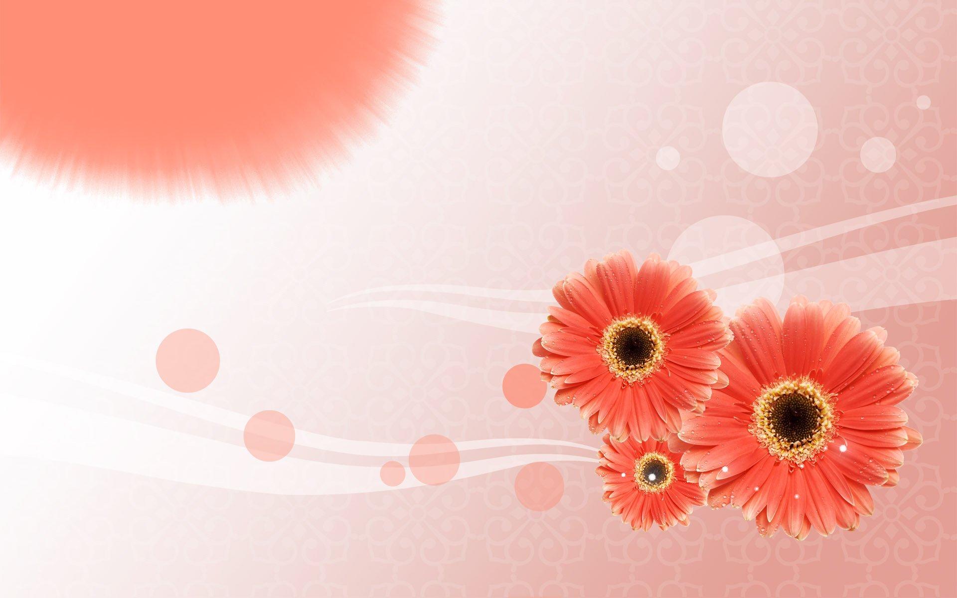 Открытки с цветами к слайдами
