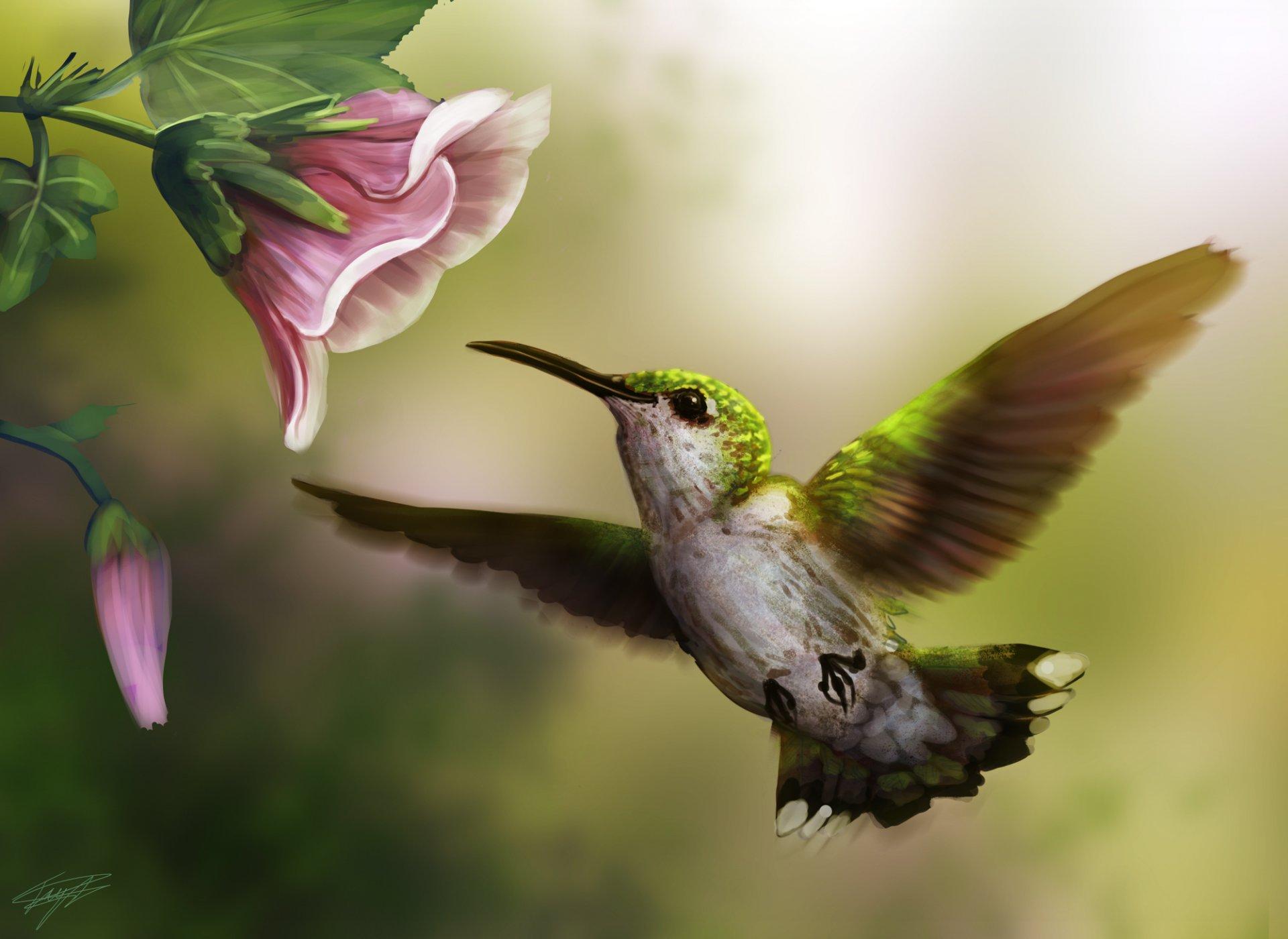 Картинки с цветами и птицами