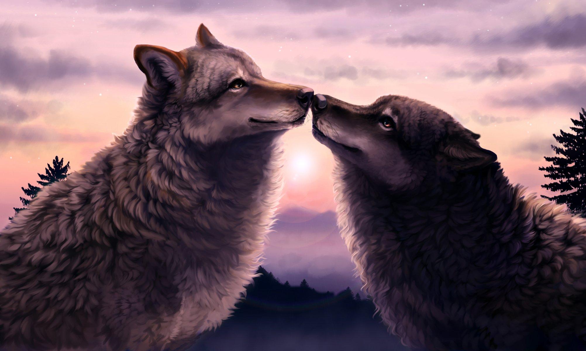 Романтика волки