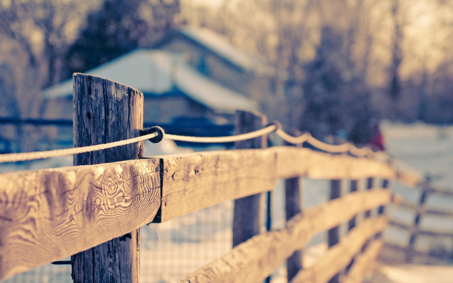 окрашенный забор  № 748110 без смс