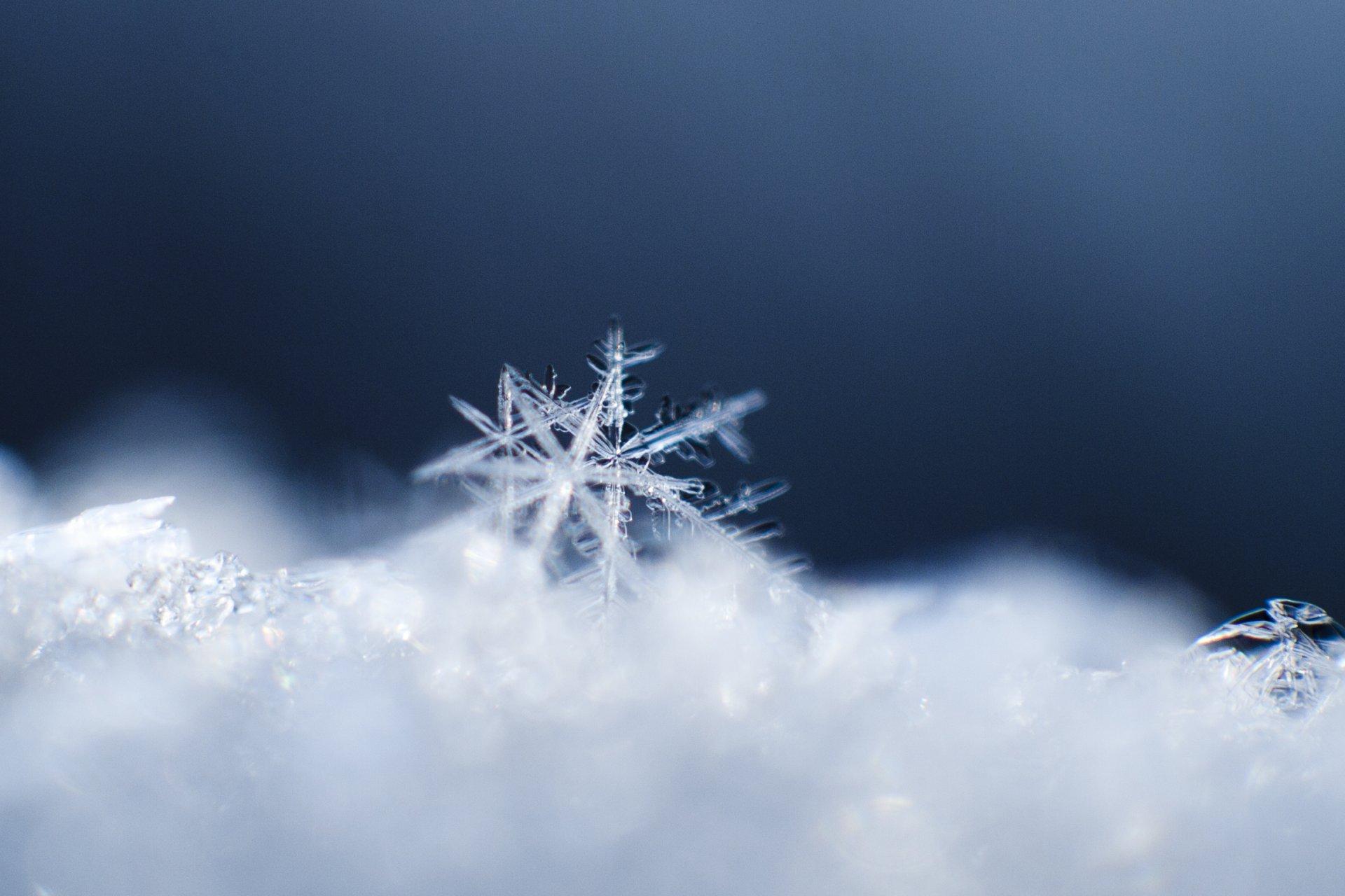 воспоминаниям картинки снег снежинки снегопад цветовая гамма