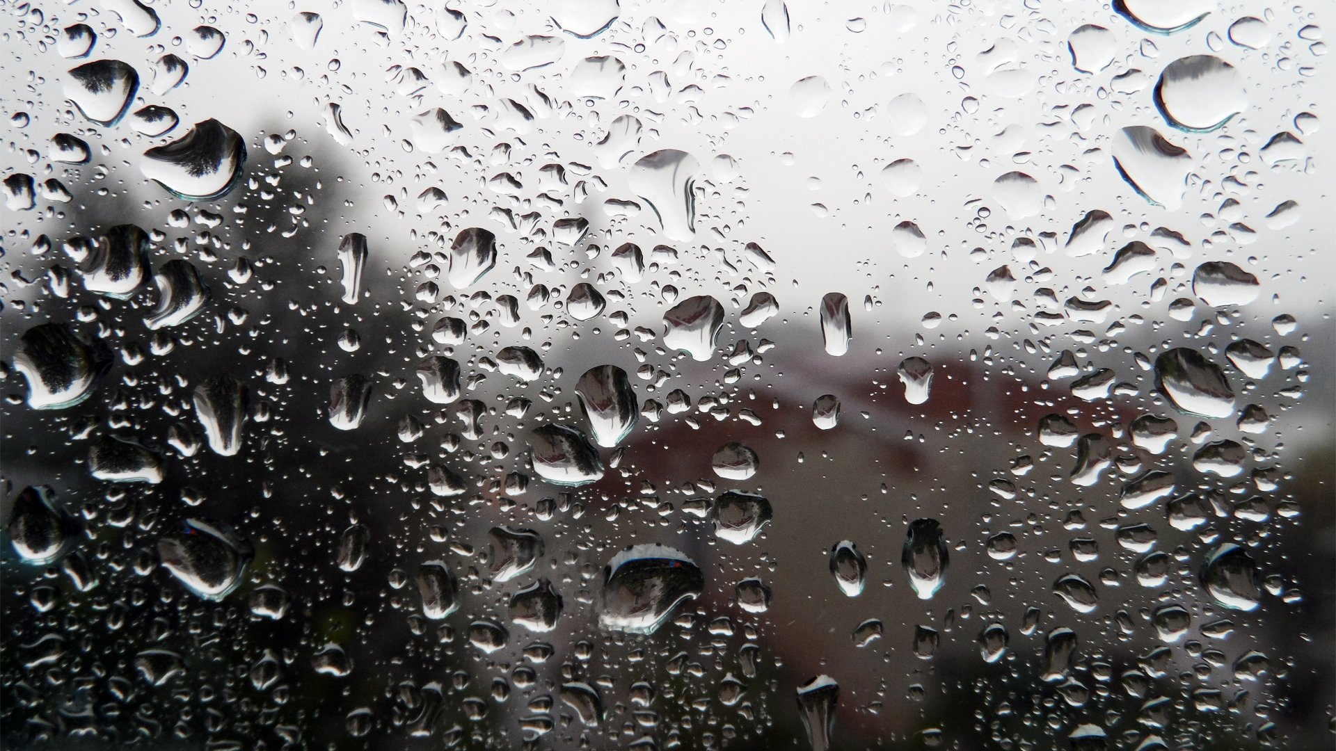 Обои капли, дождь, стекло. Разное foto 15