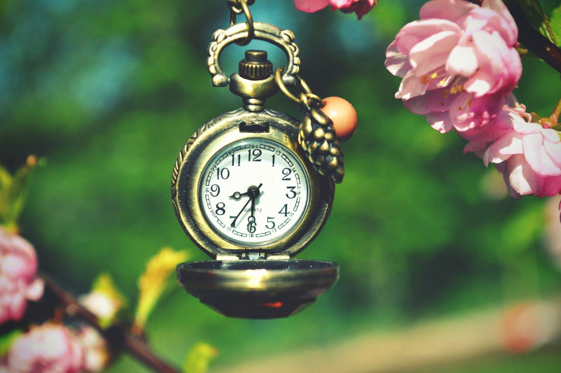 природа цветы часы  № 1520657 без смс