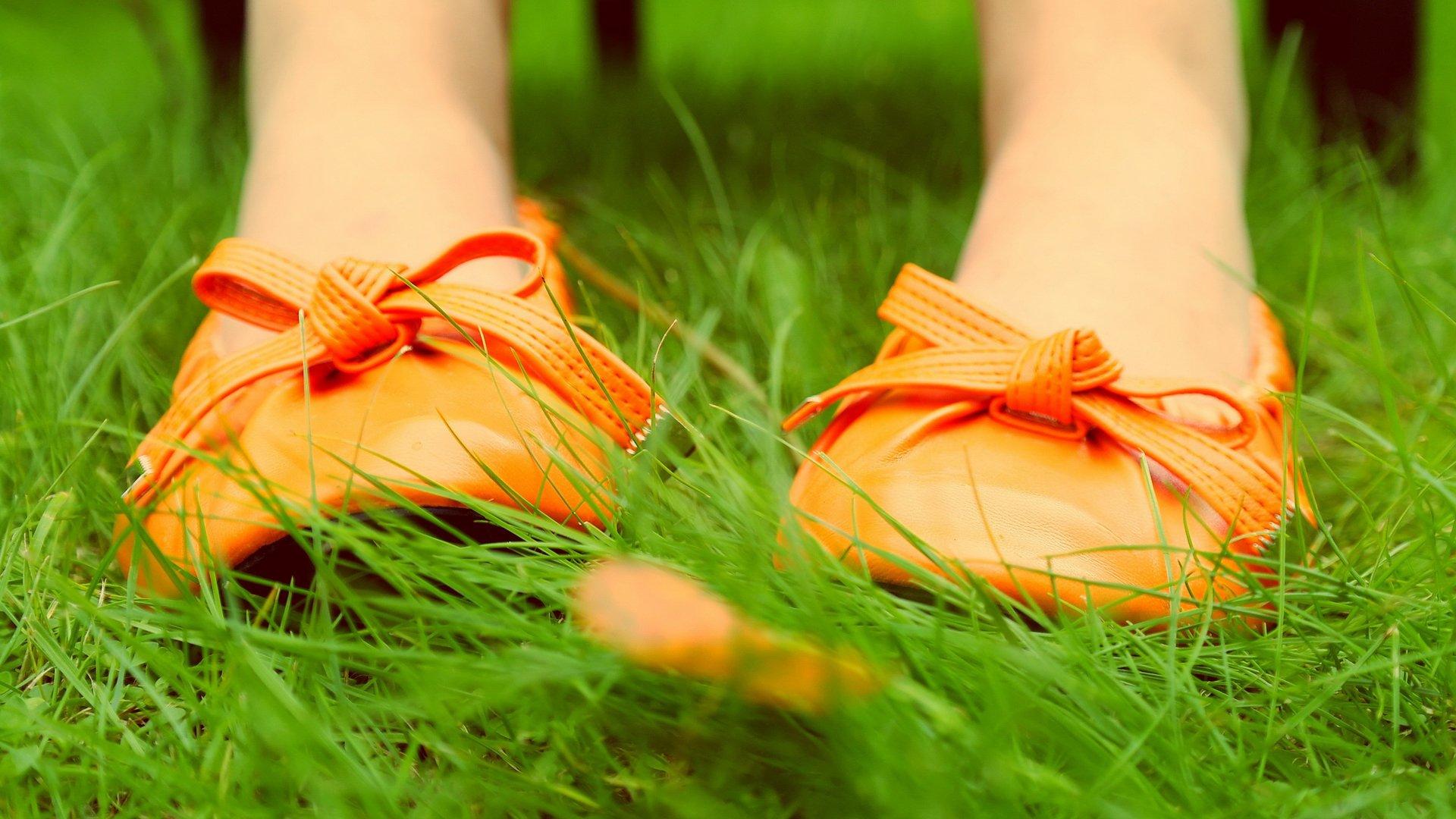 кеды трава цветы скачать