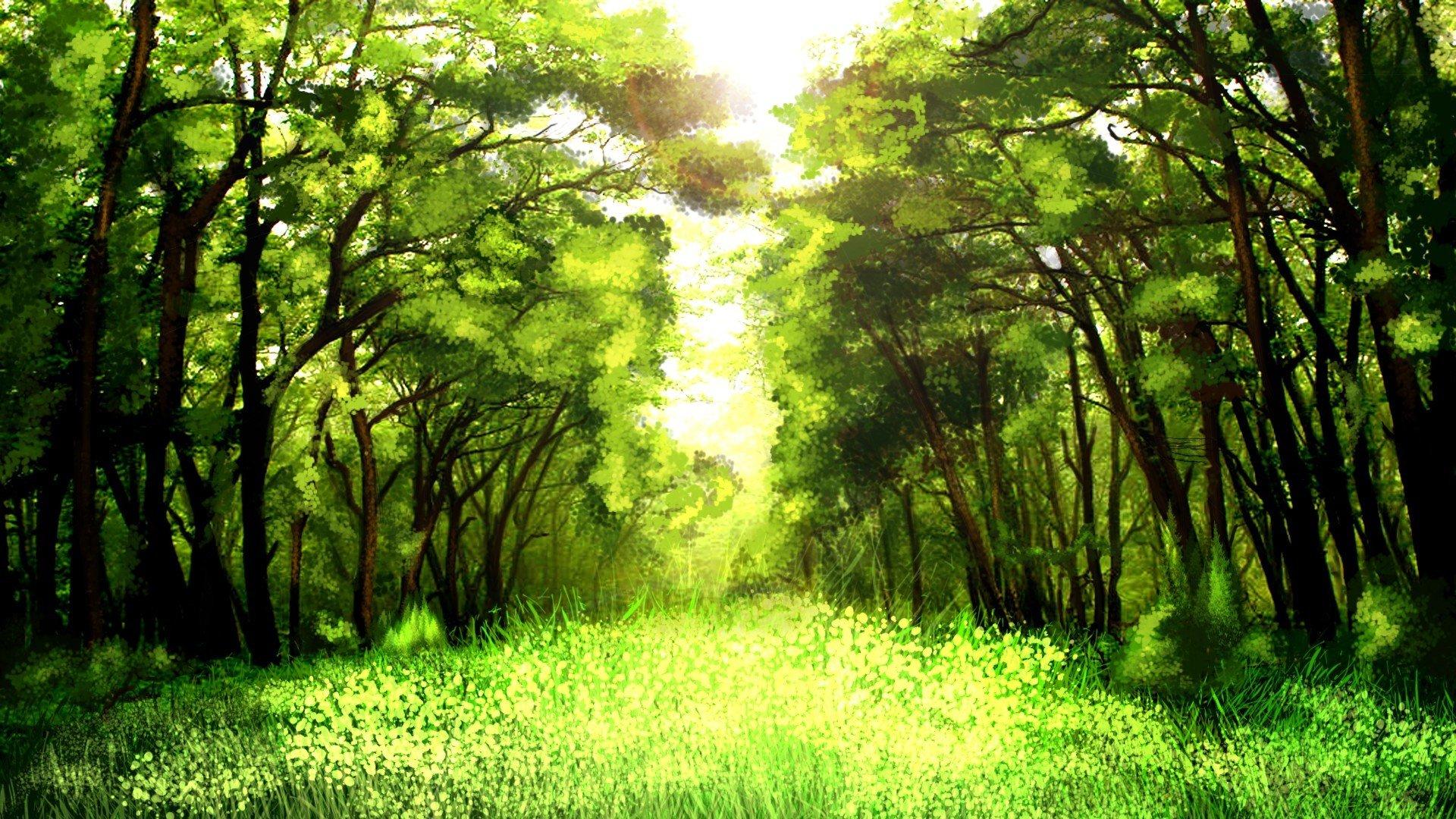 зелень лес деревья  № 1078780  скачать