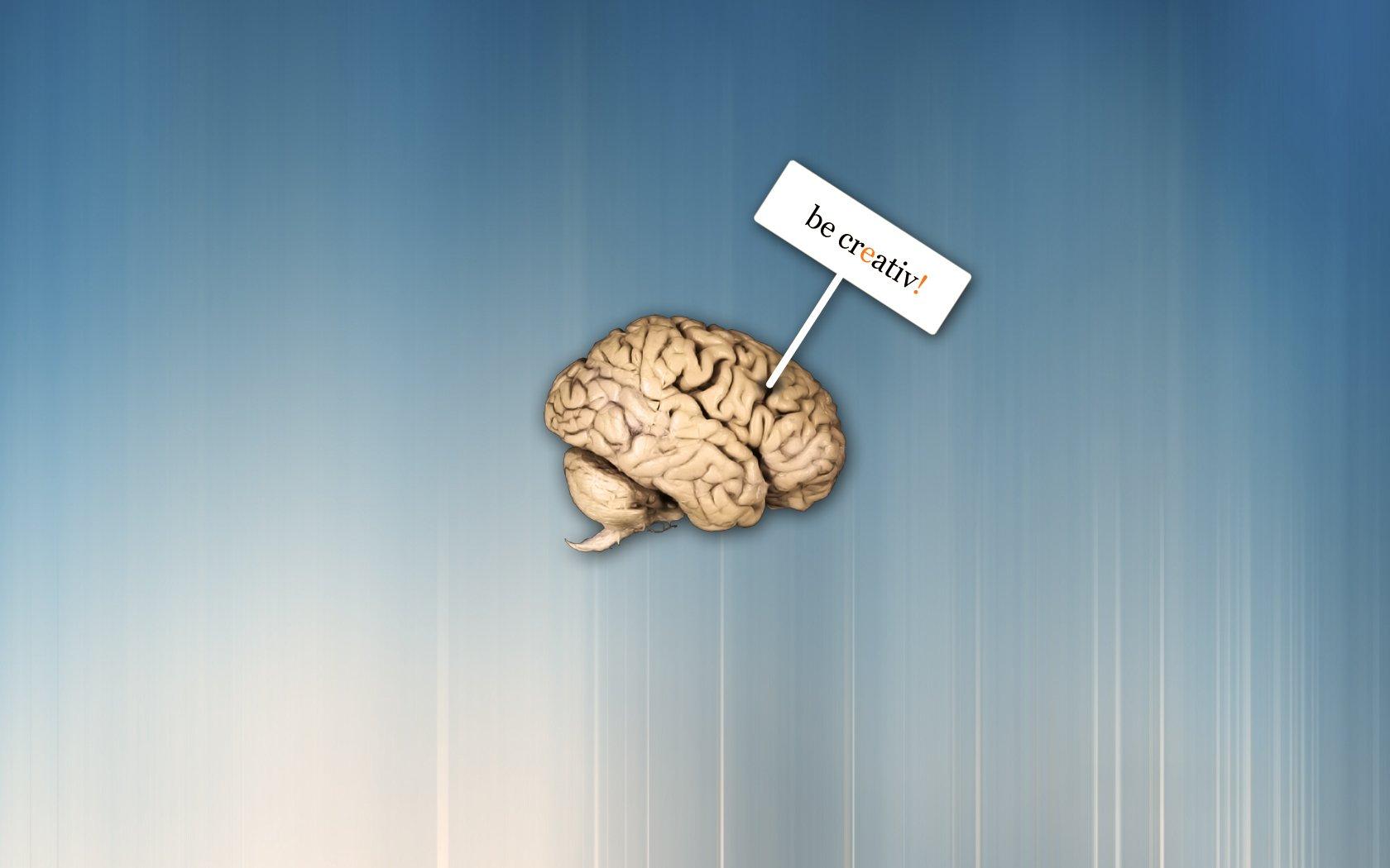 мозг картинки со смыслом территории волгоградской