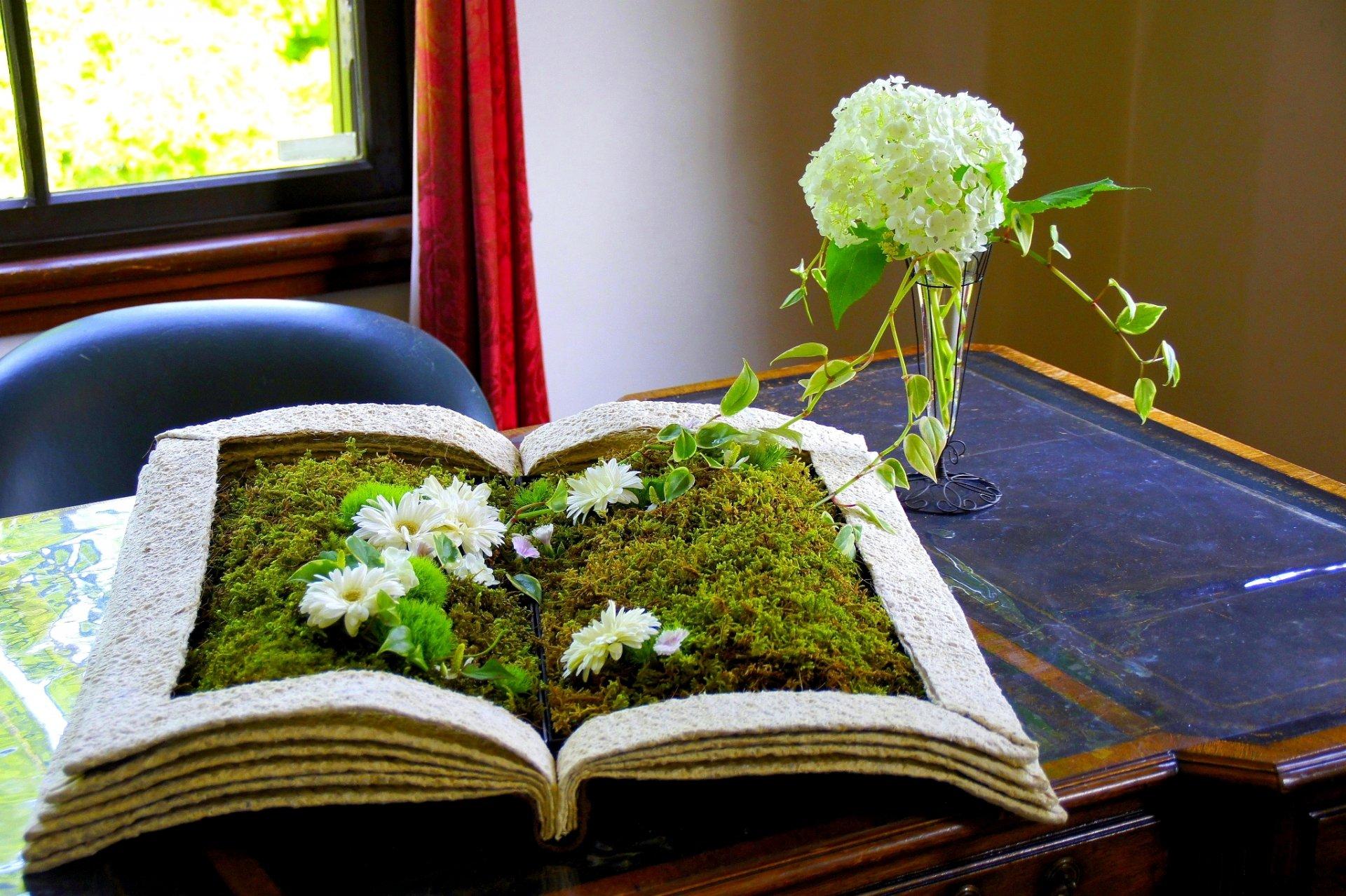 Фото книга из цветов 137