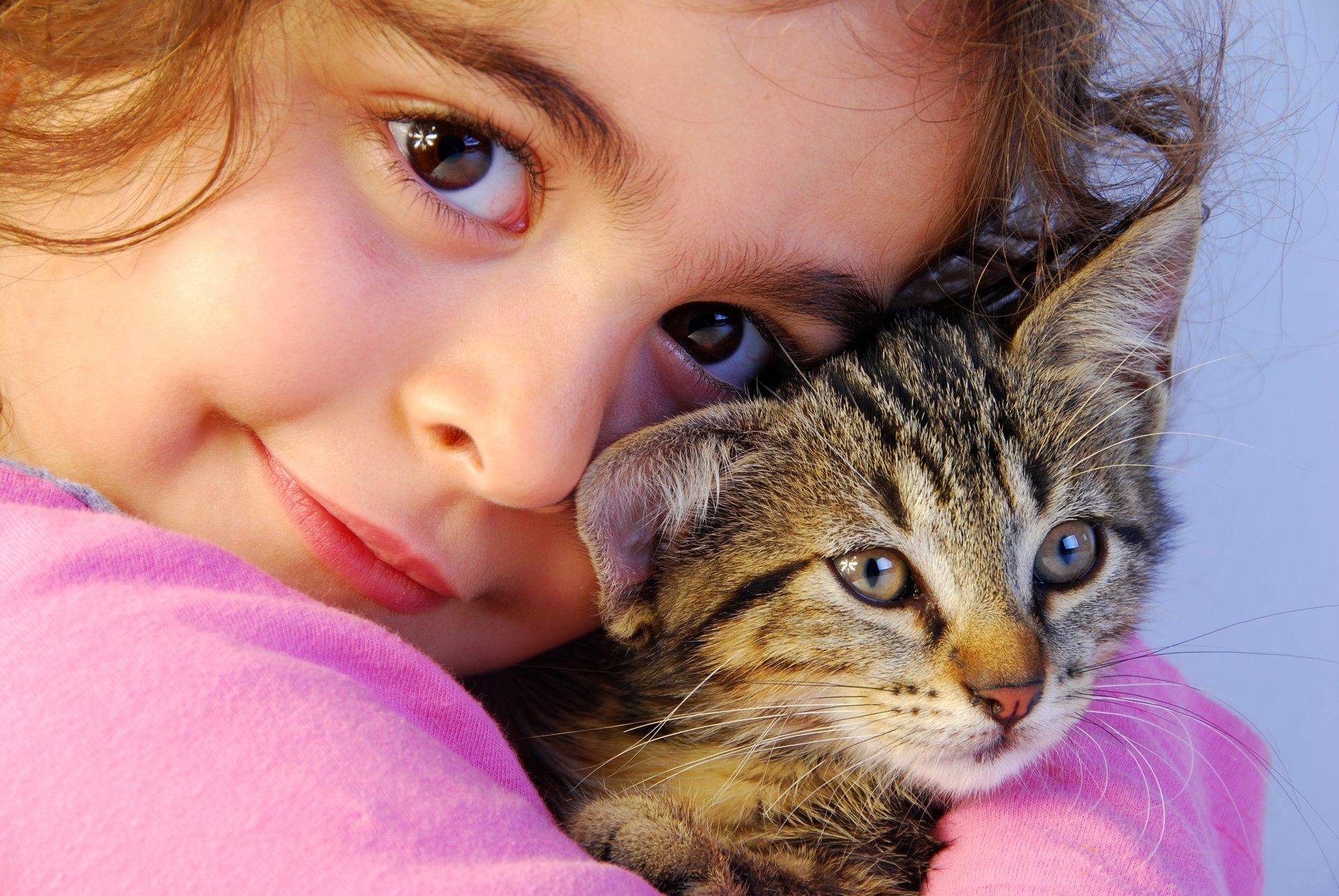 Фотогалерея - Кошки и дети - Забавные фото кошек - CATS -галерея 43