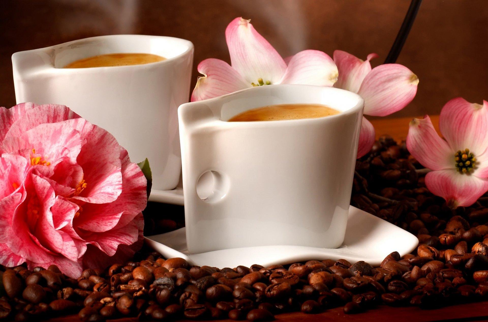 Крутые свинка, картинки с цветами и кофе
