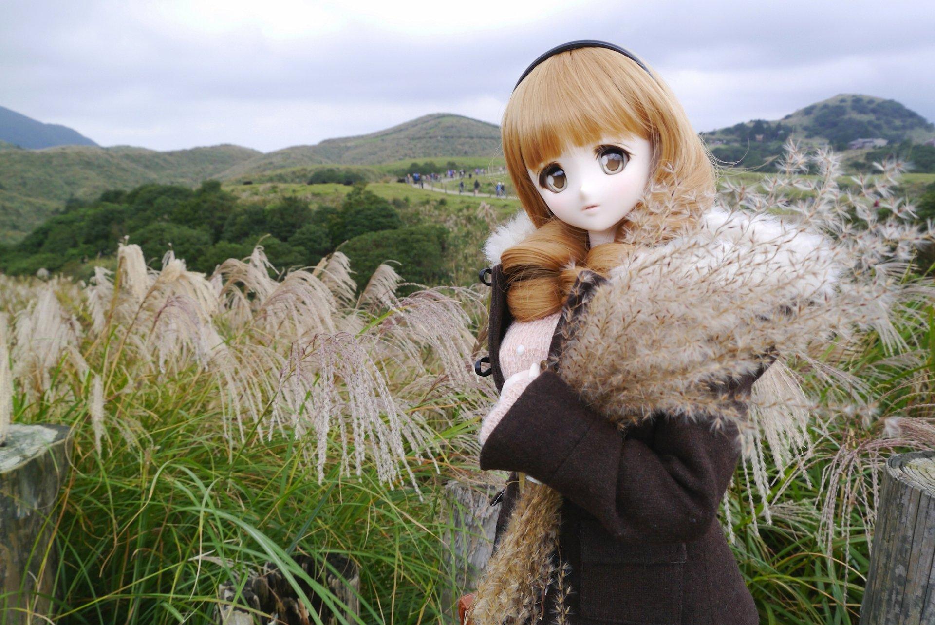 фото наших кукол на природе повеселиться