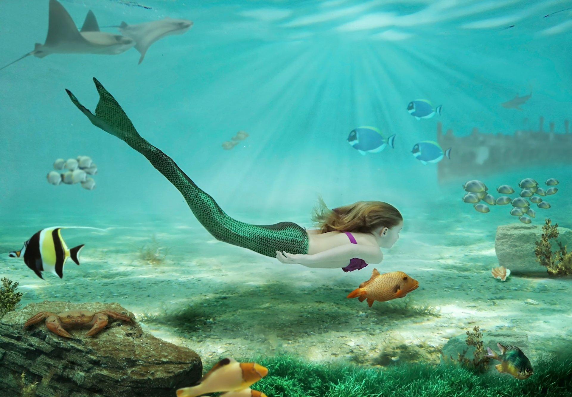 картинки подводного мира или с русалками базовой