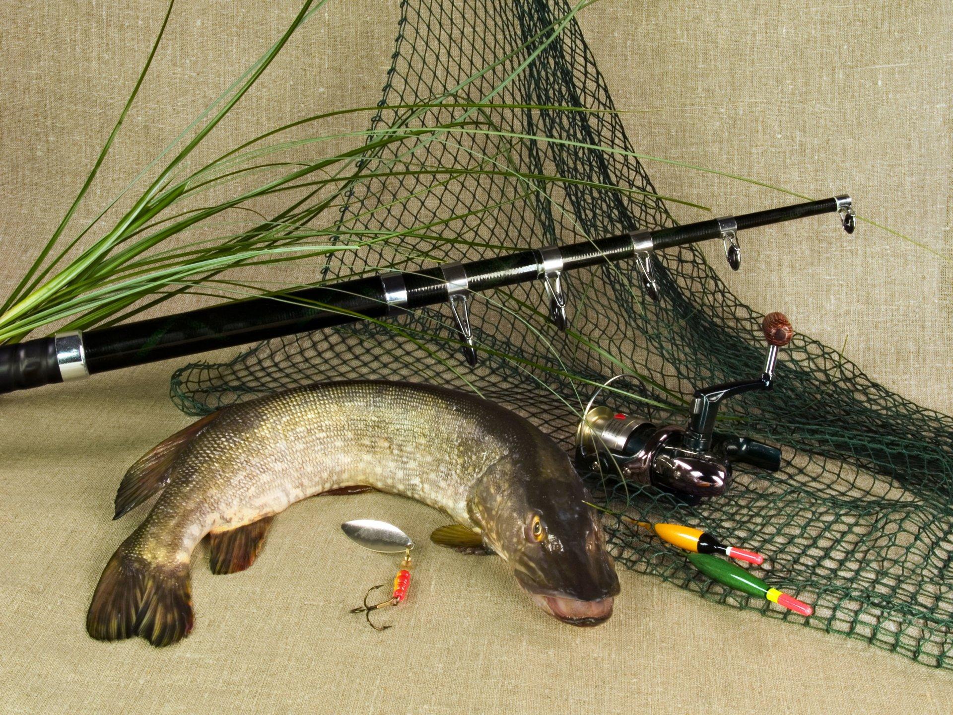 Рыбацкие снасти для ловли щуки