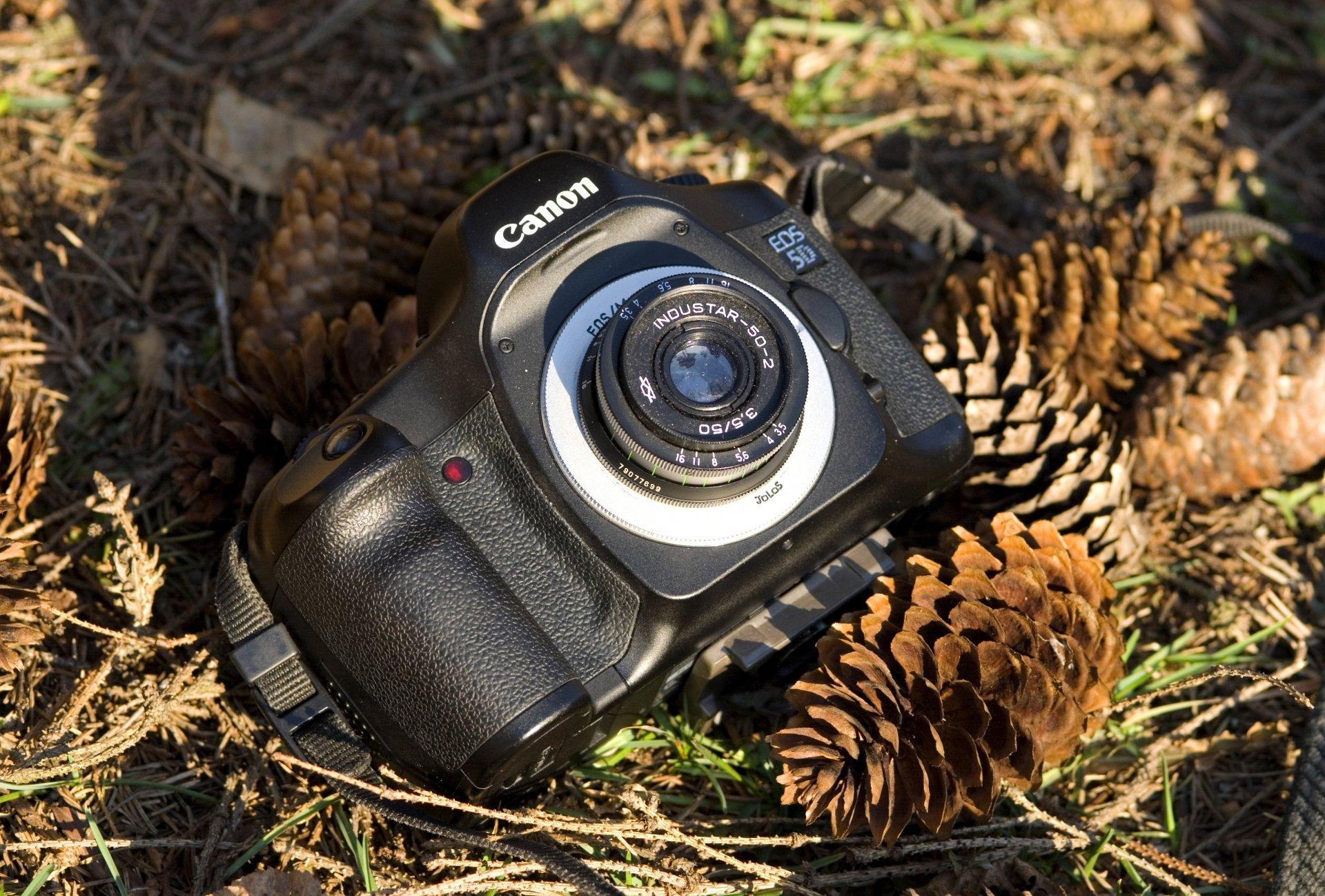 Как сделать на фото размытый фон на фотоаппарате