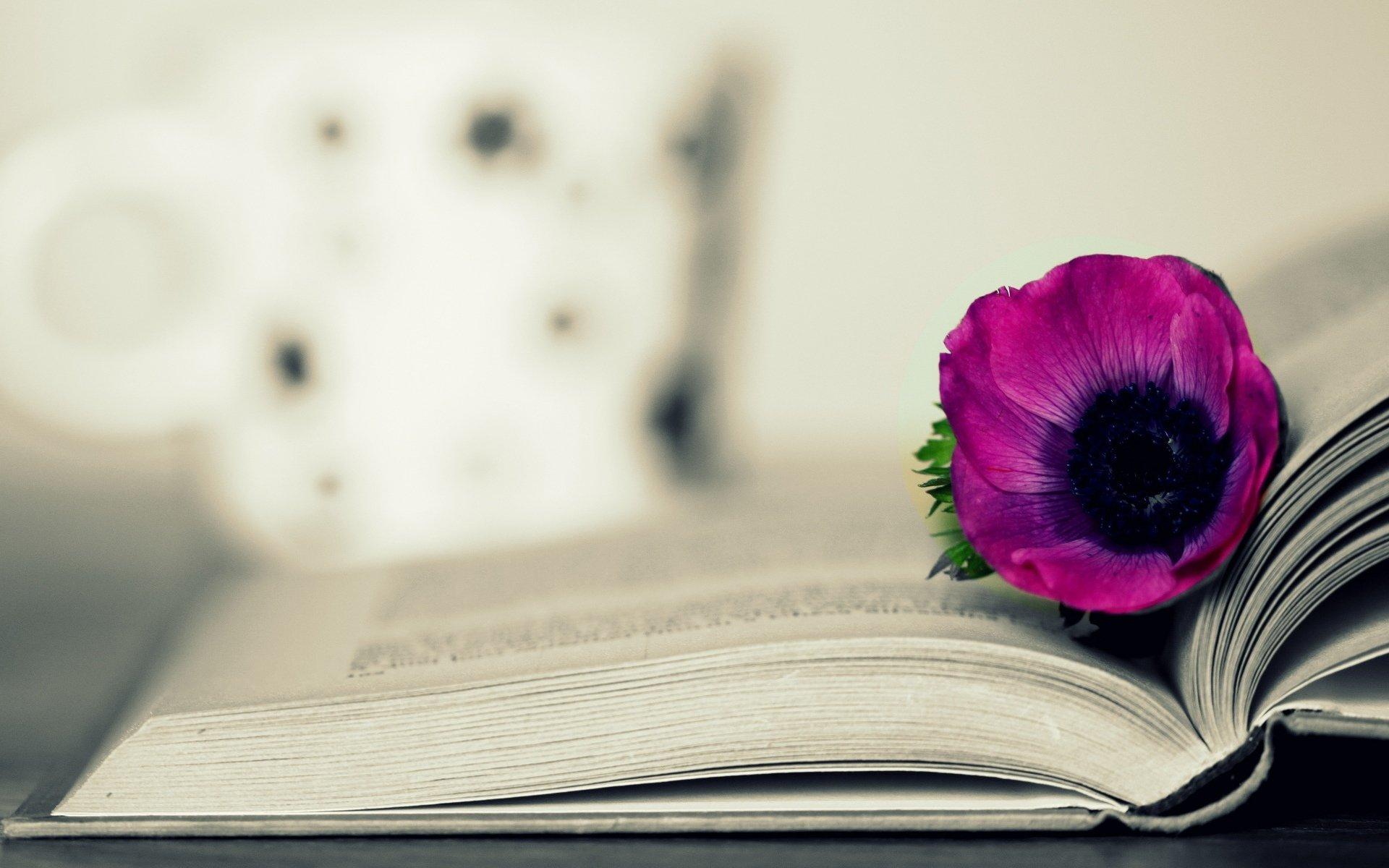 эластомер, картинки для обложки книги цветы повышается