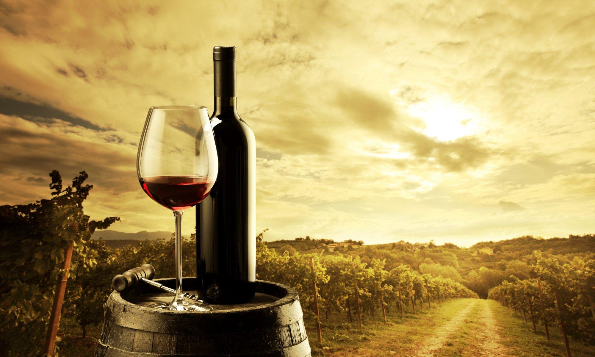 Обои Бутылки, бочки, виноградники, виноград, вино. Разное foto 16