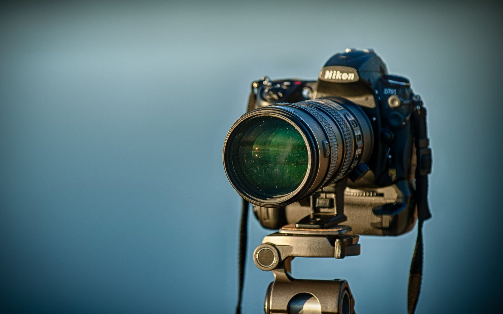 Camaras fotograficas profesionales nikon en panama 95