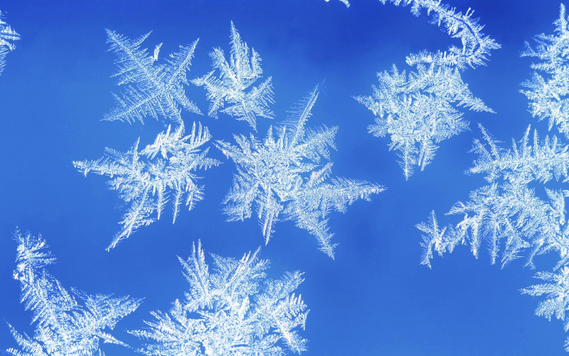 Зимние узоры картинки