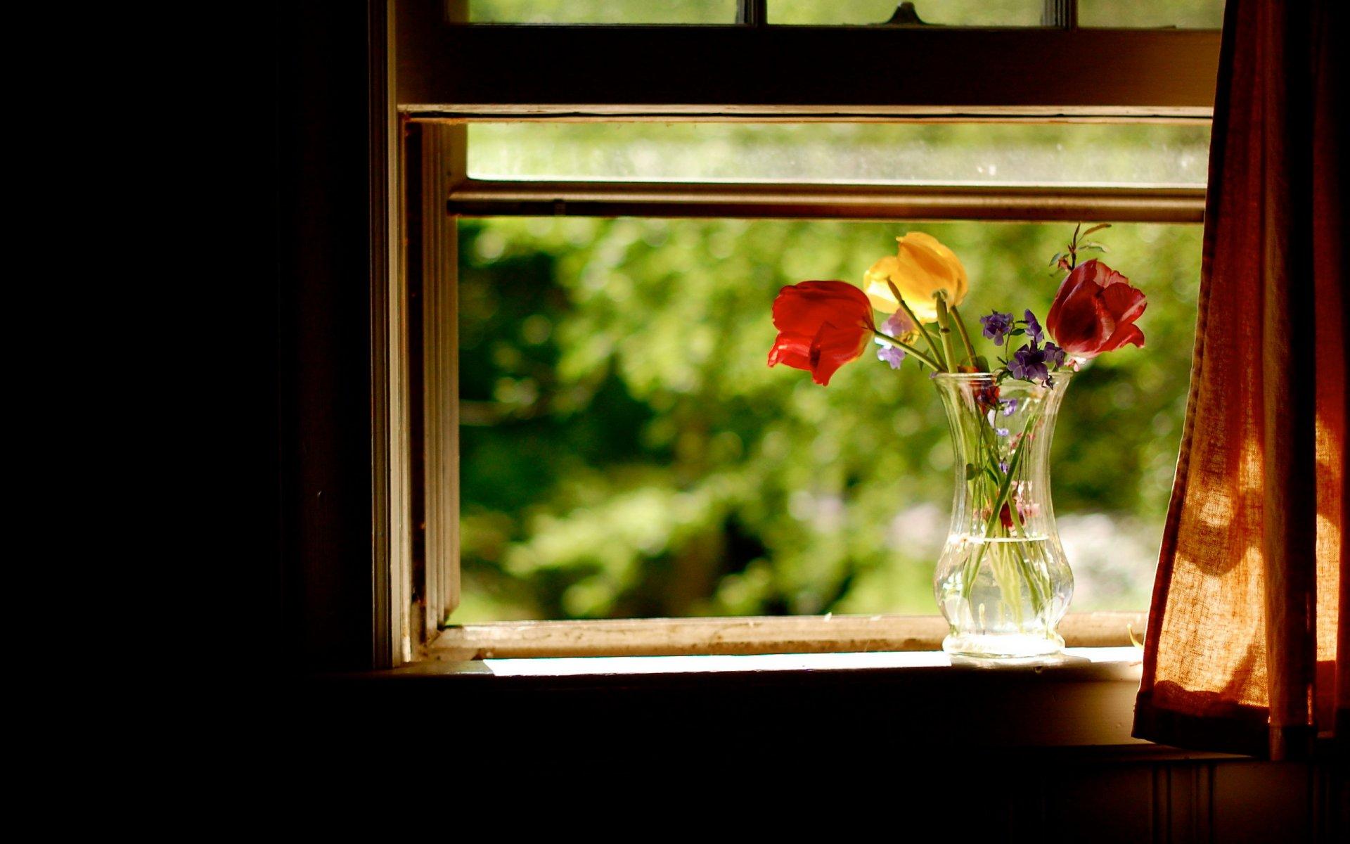 японское обои на телефон окно в розах миди