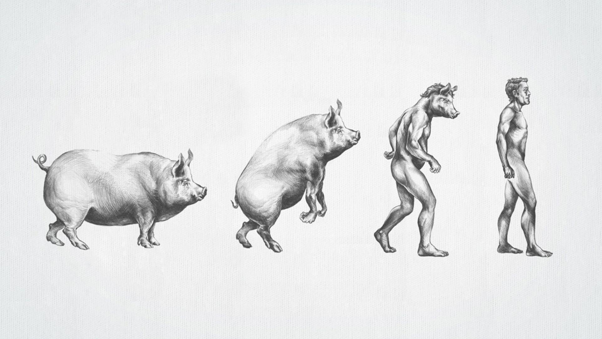 Для оформления, смешные нарисованные картинки с животными и людьми