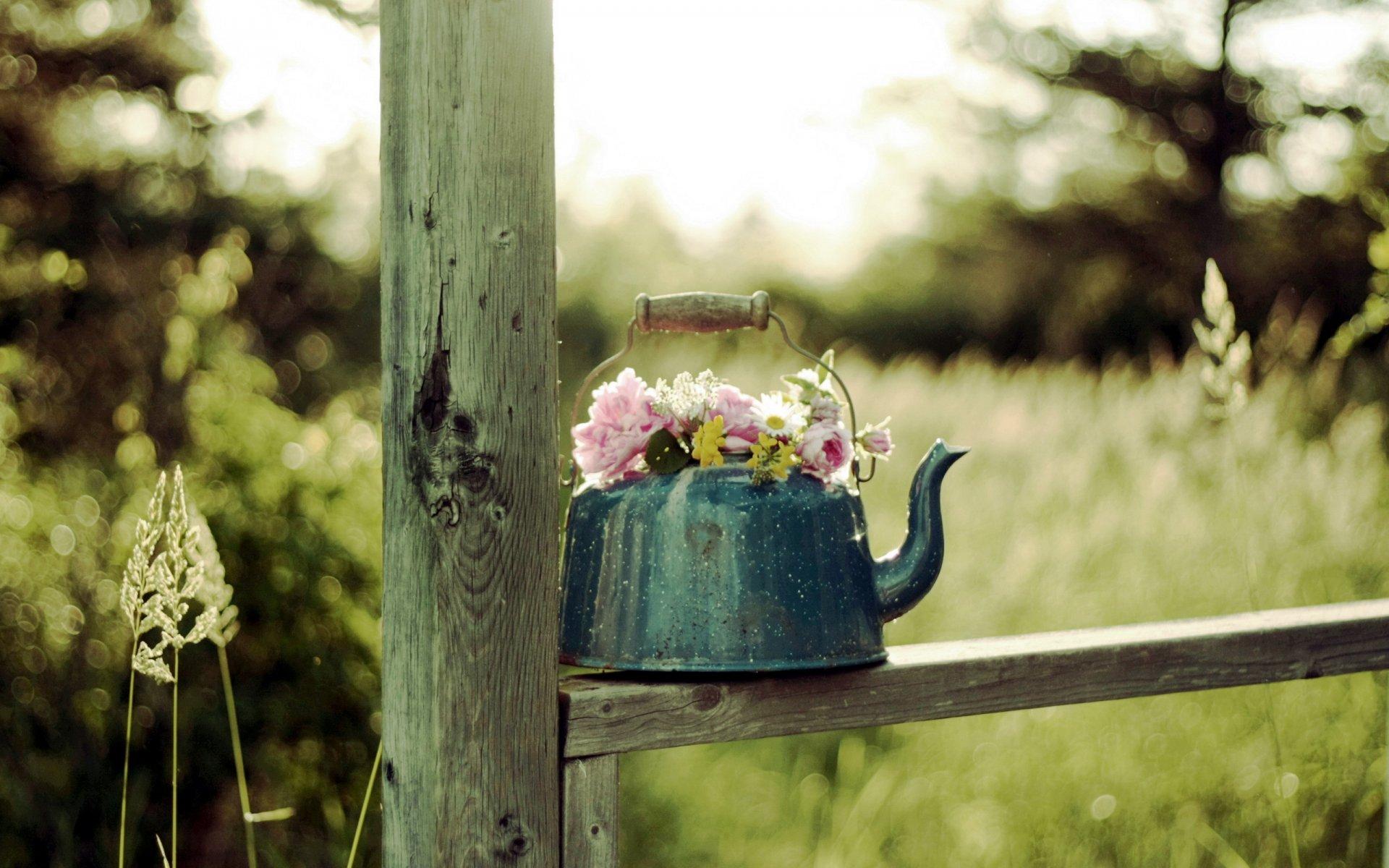 Удачи картинки красивые необычные нежные, добрым утром