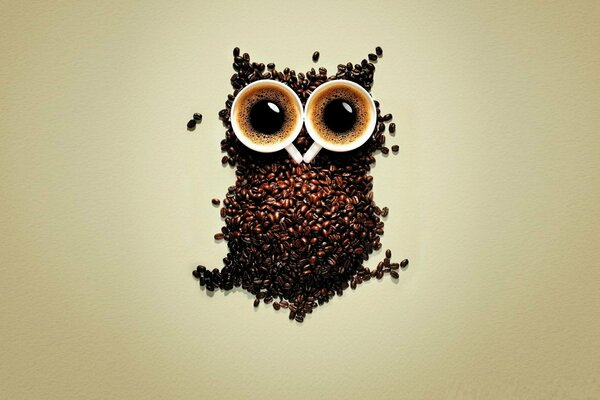 cups of coffee coffee coffee beans owl