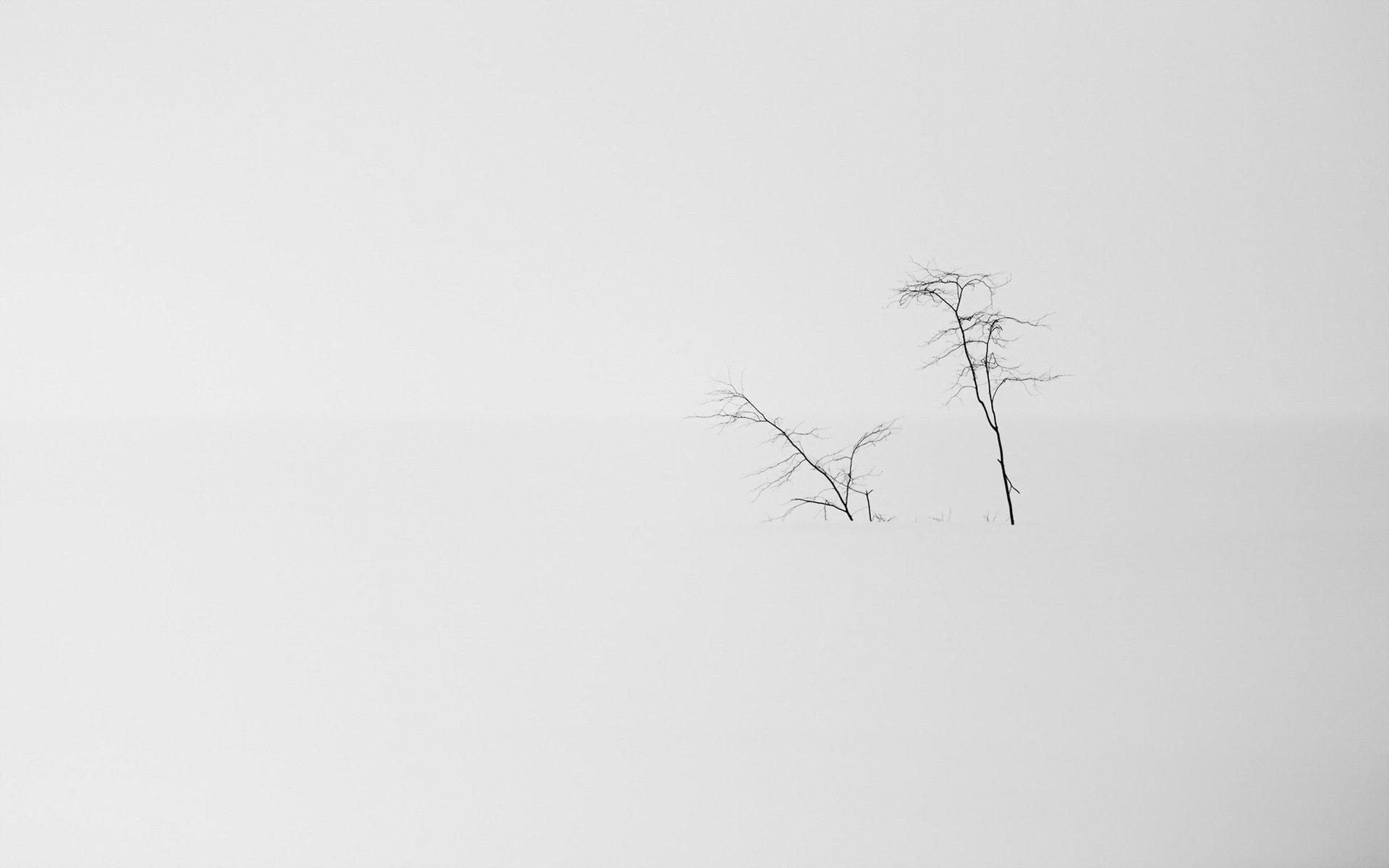 Черно белые картинки на фон минимализм