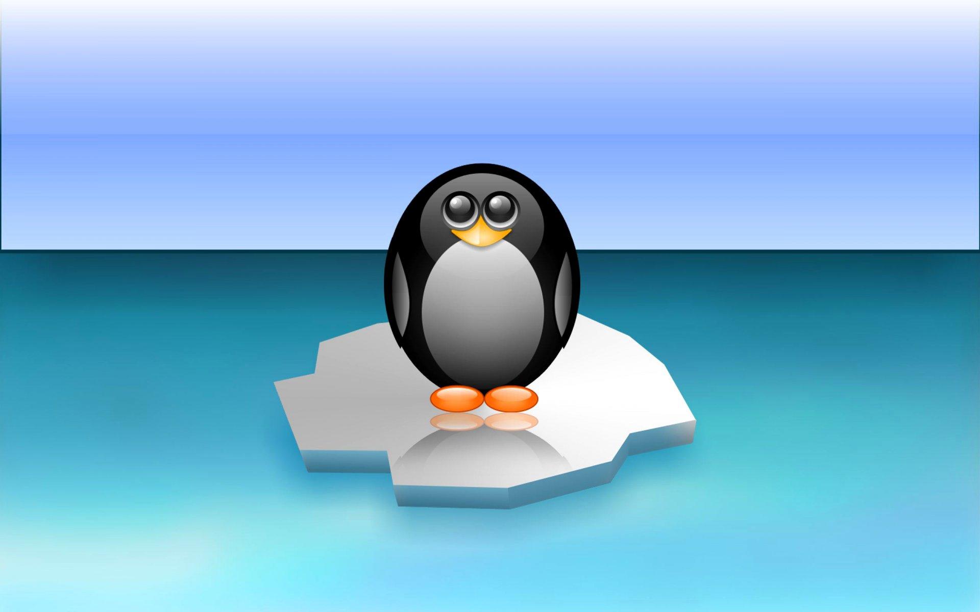 приложения обои на рабочий стол пингвины на льдине надо