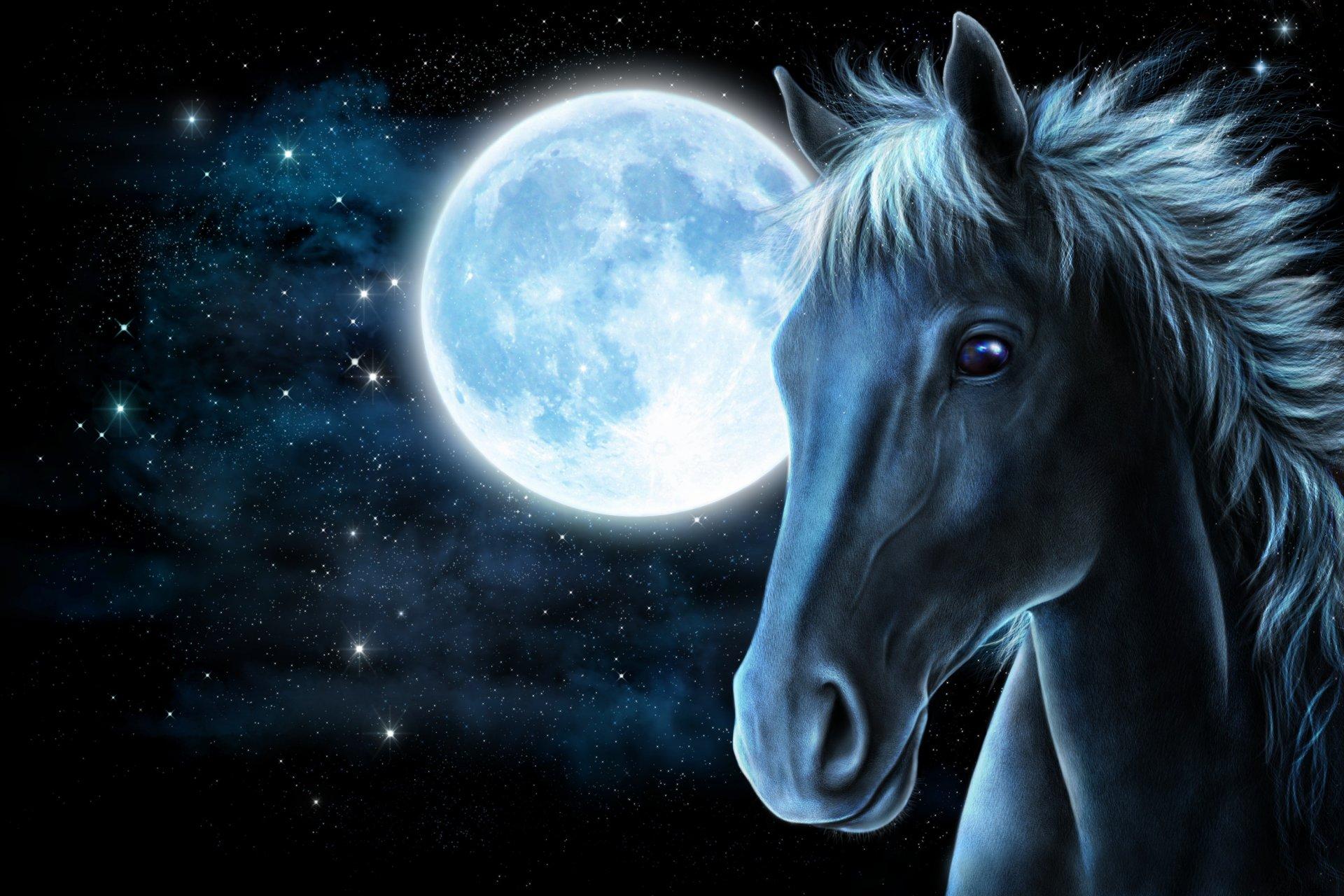 Обои пламя, лошадь, Цвет, грива. Абстракции foto 16